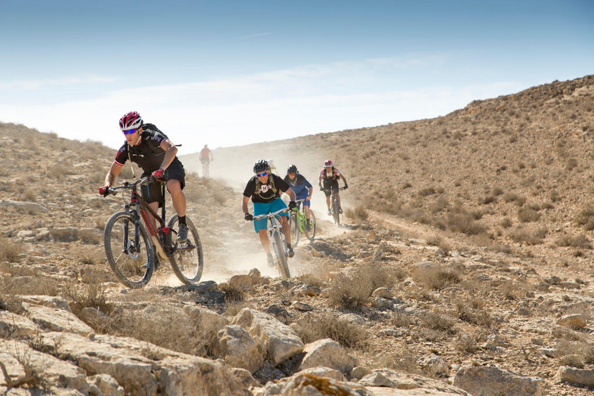 Bike riding in Negev–Arava region 2019