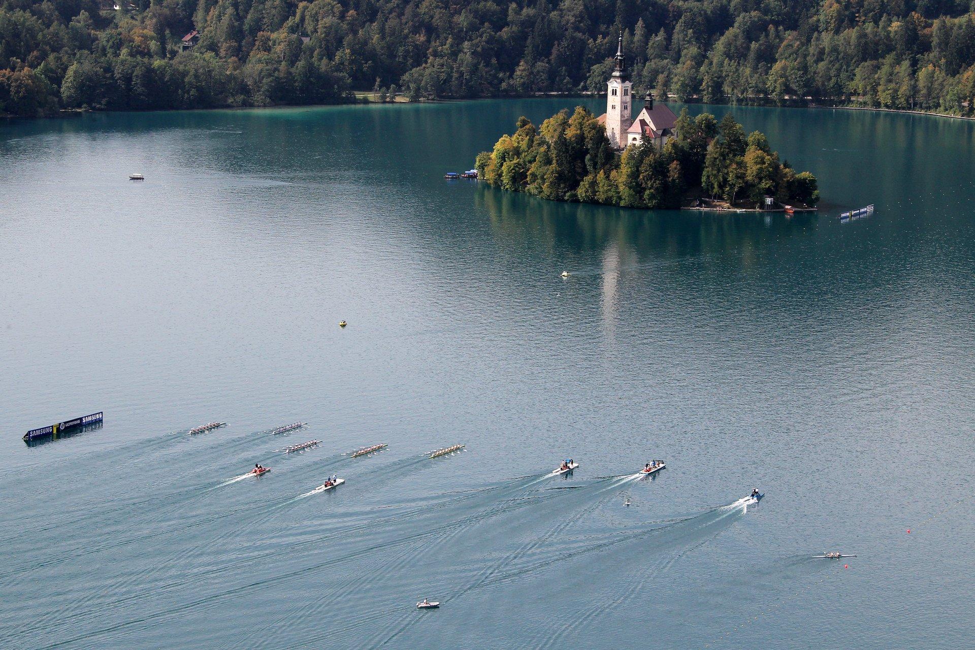 International Rowing Regatta in Slovenia - Best Season 2020
