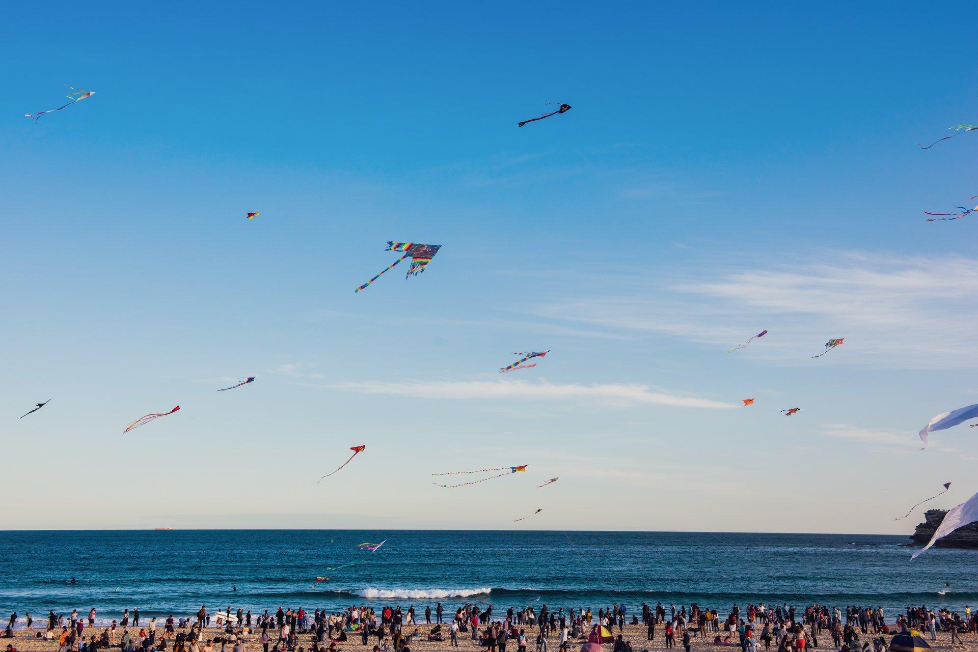 Festival of the Winds in Sydney - Best Season 2019