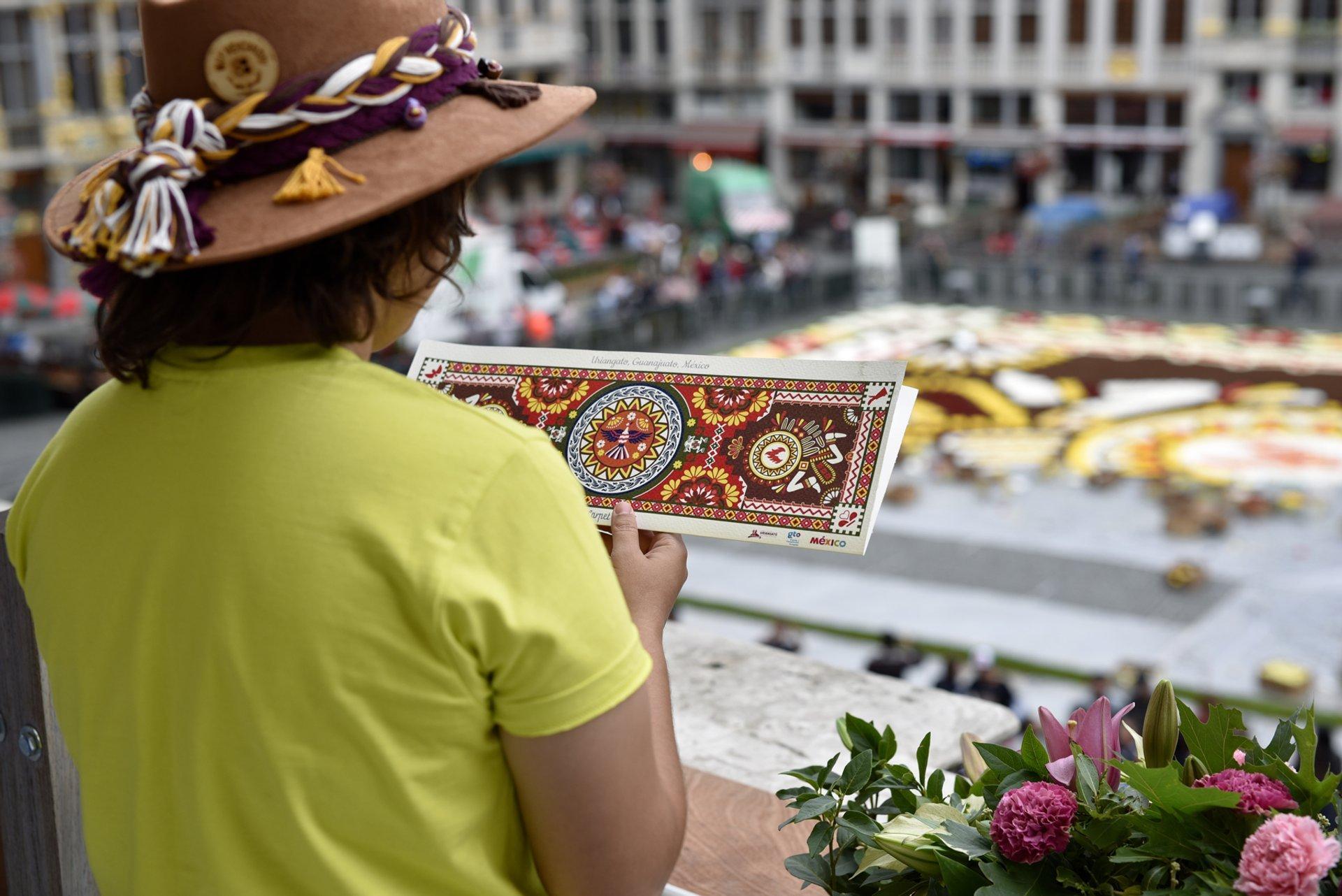 Flower Carpet & Flowertime in Brussels - Best Season 2020