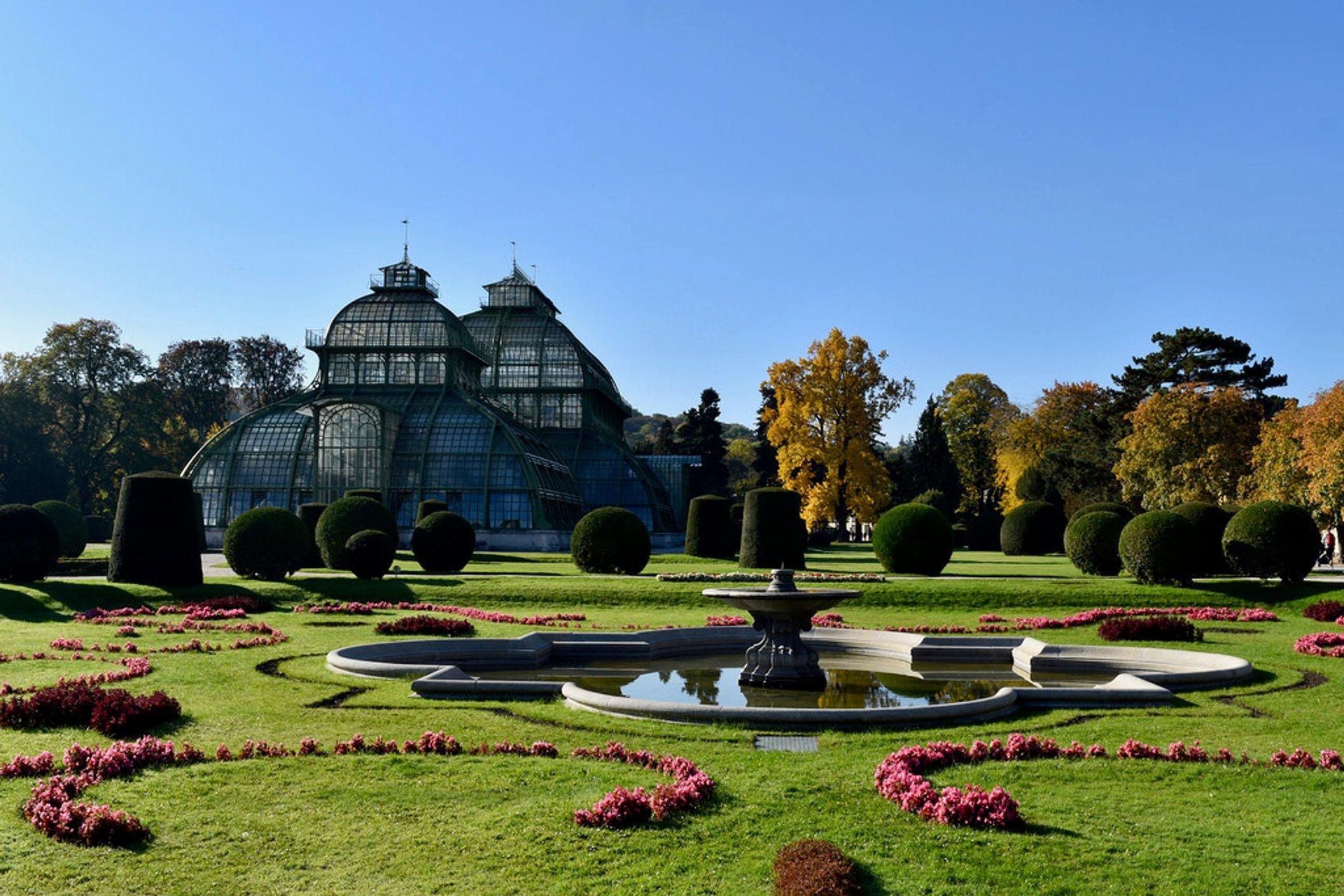 Best time for Schönbrunn Palace 2020