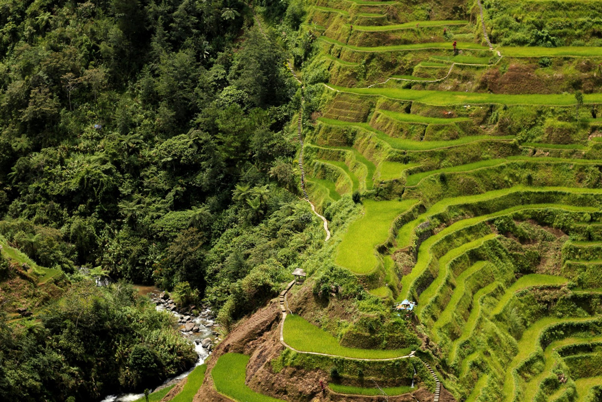 Banaue and Batad Rice Terraces in Philippines 2019 - Best Time