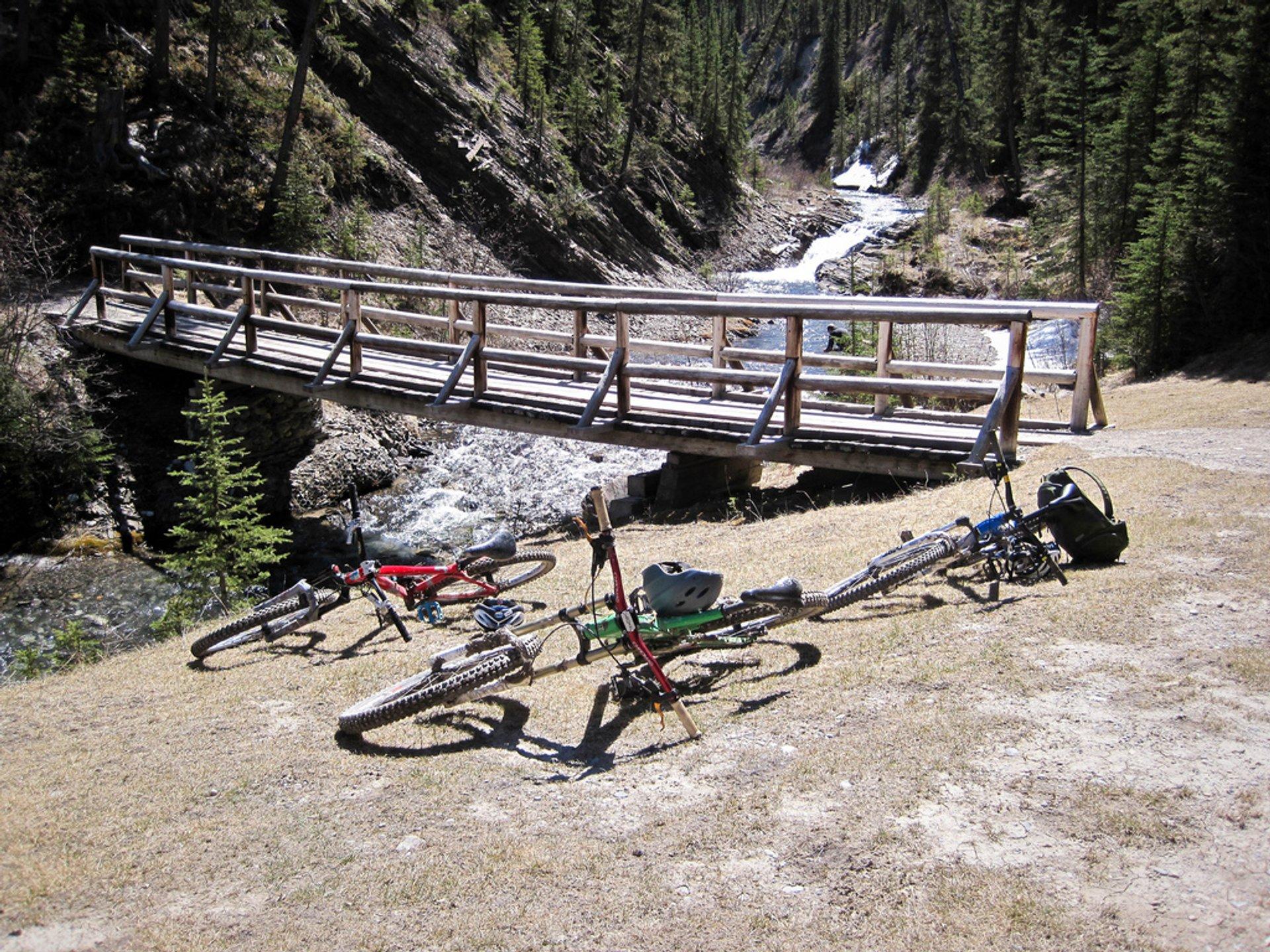 Mountain Biking in Banff & Jasper National Parks - Best Season 2020