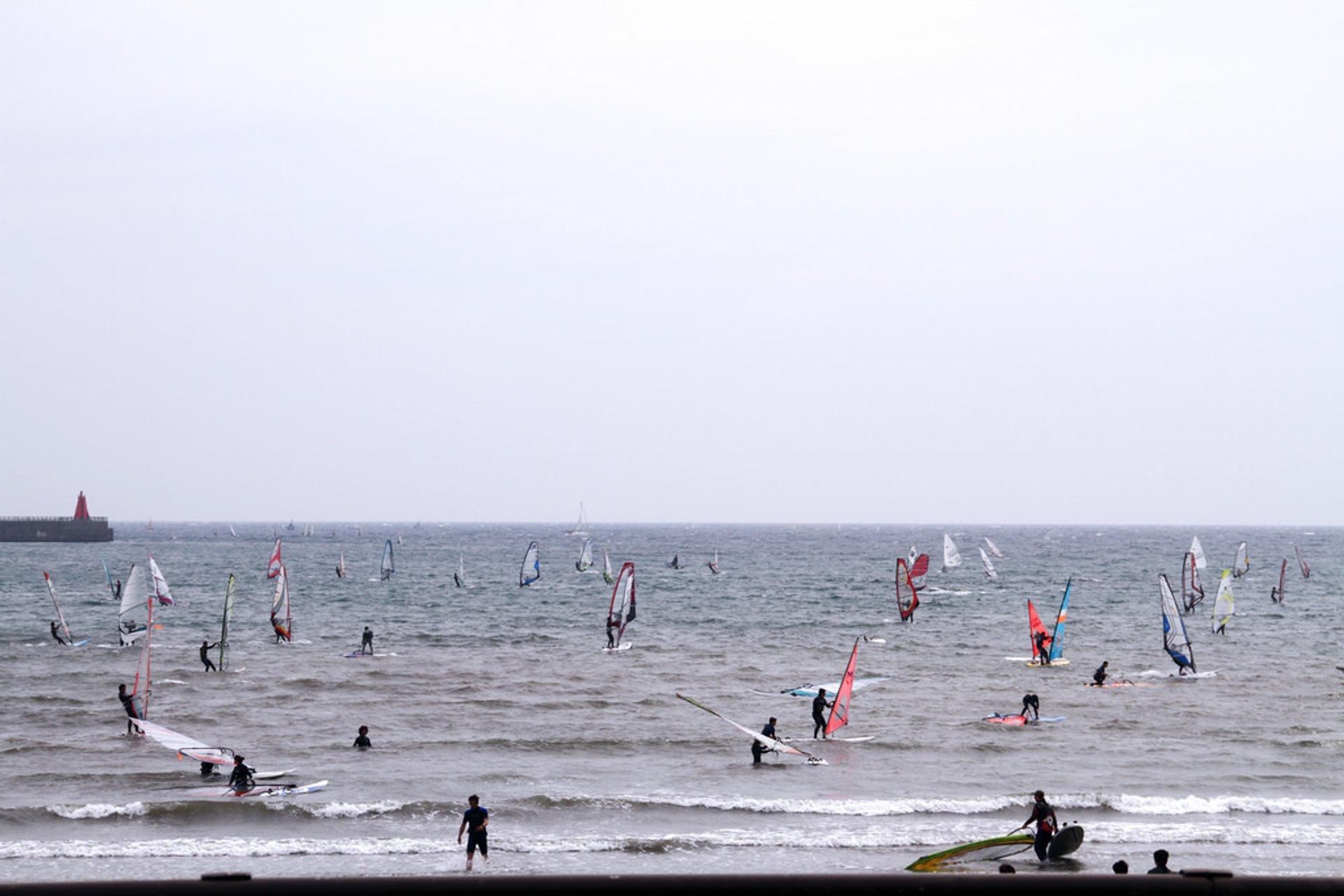 Zushi, Kanagawa, Japan 2020