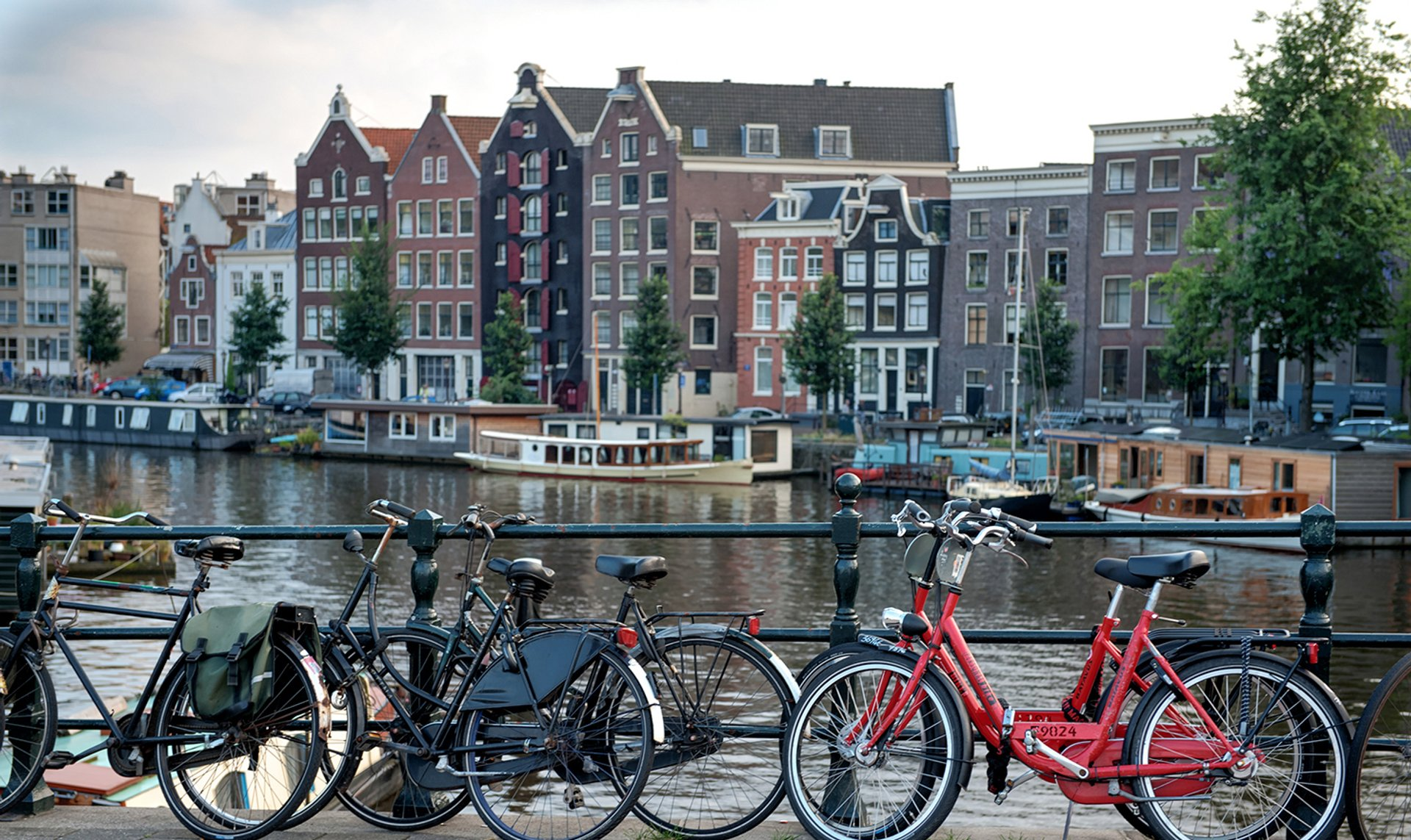 Biking in Amsterdam 2020 - Best Time