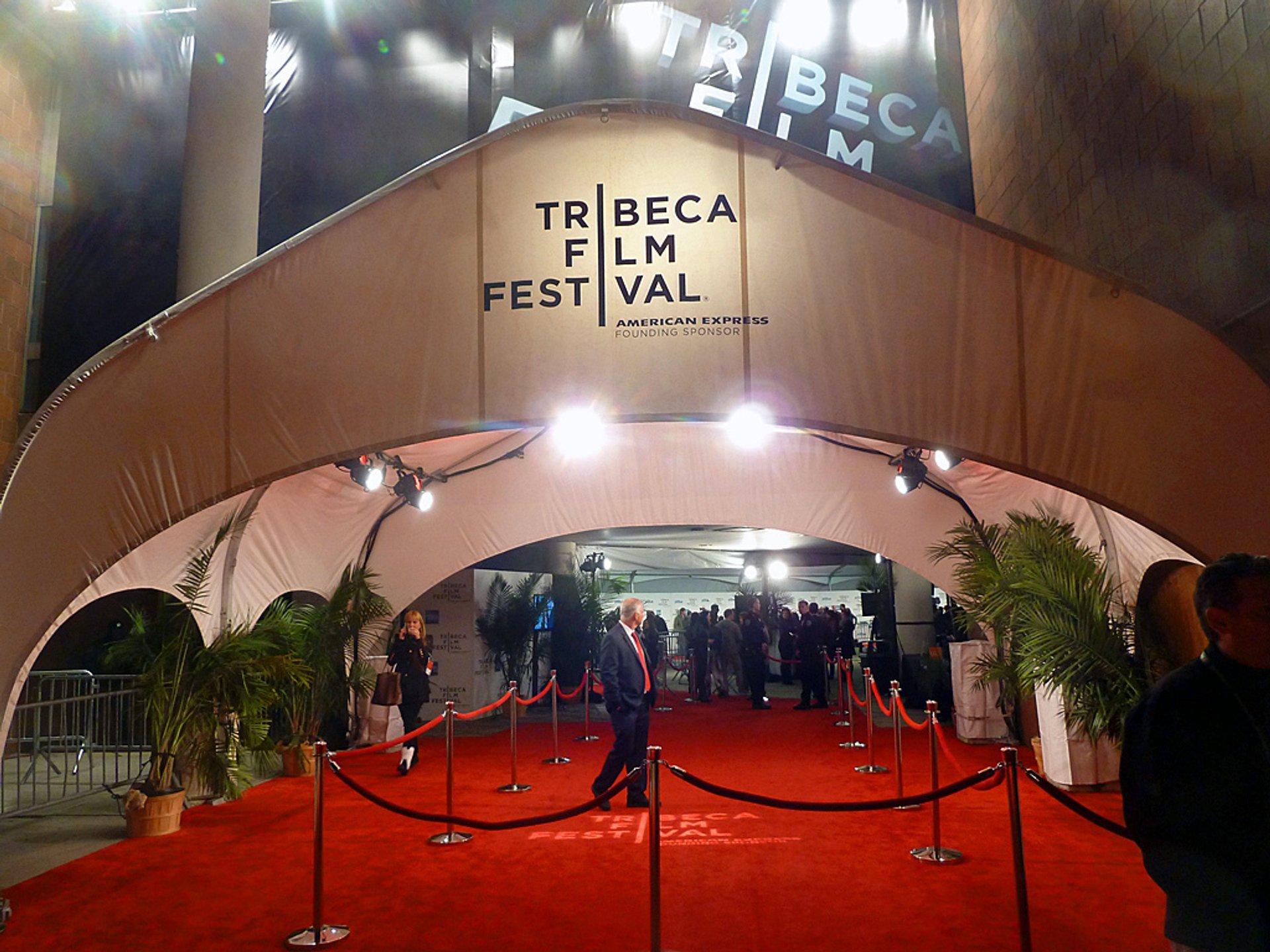 The festival's red carpet 2020