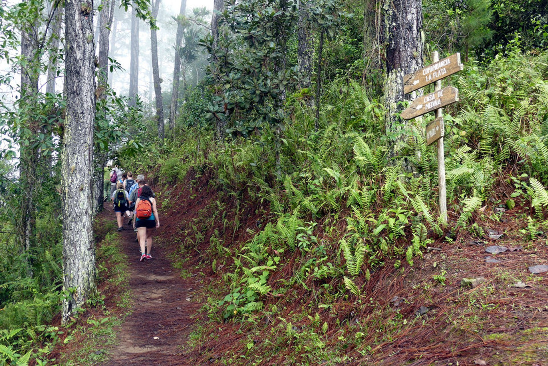Trail to Comandancia de la Plata 2020