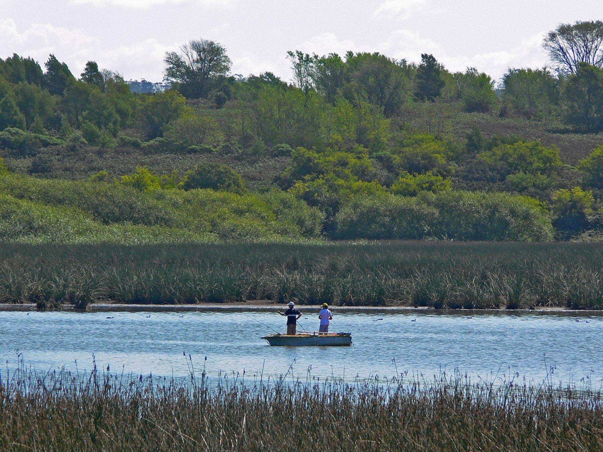 Fishing in Laguna De Los Padres, Buenos Aires