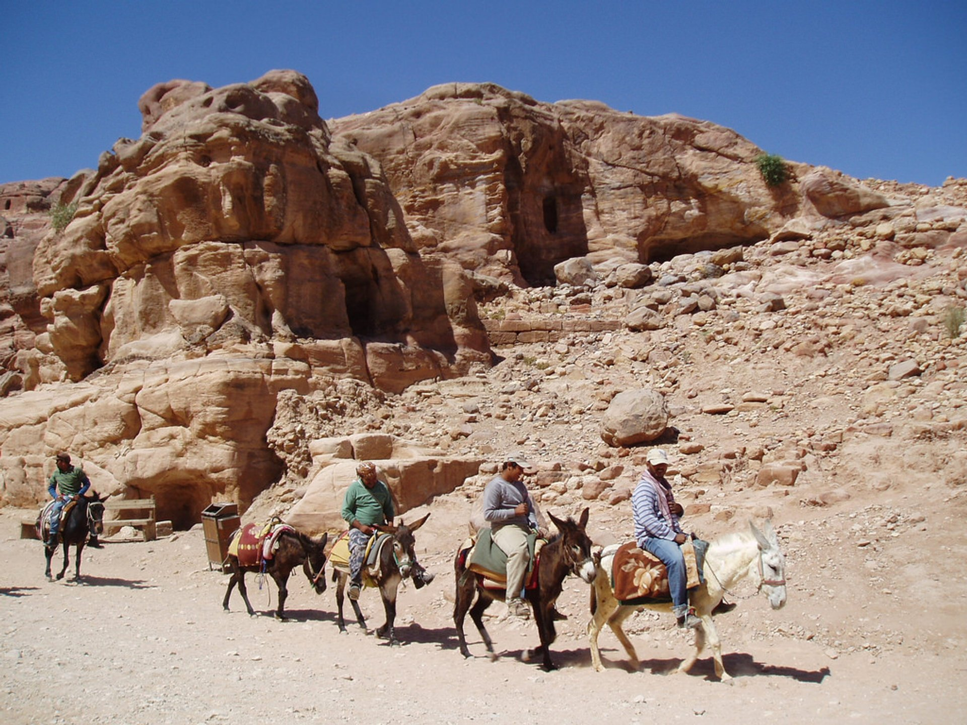 Best time for Donkey Ride in Jordan 2020