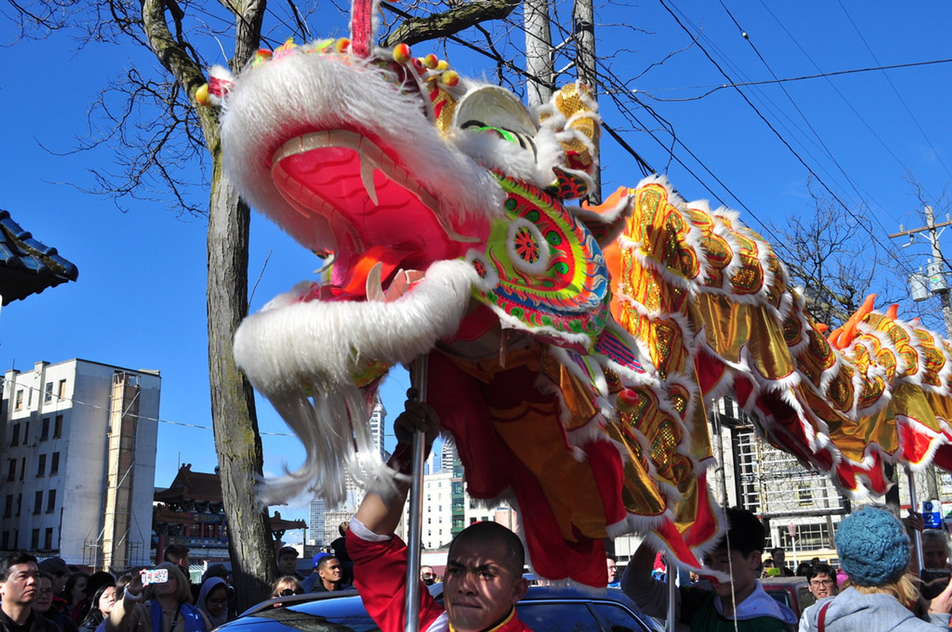 Chinese New Year in Seattle - Best Season 2019