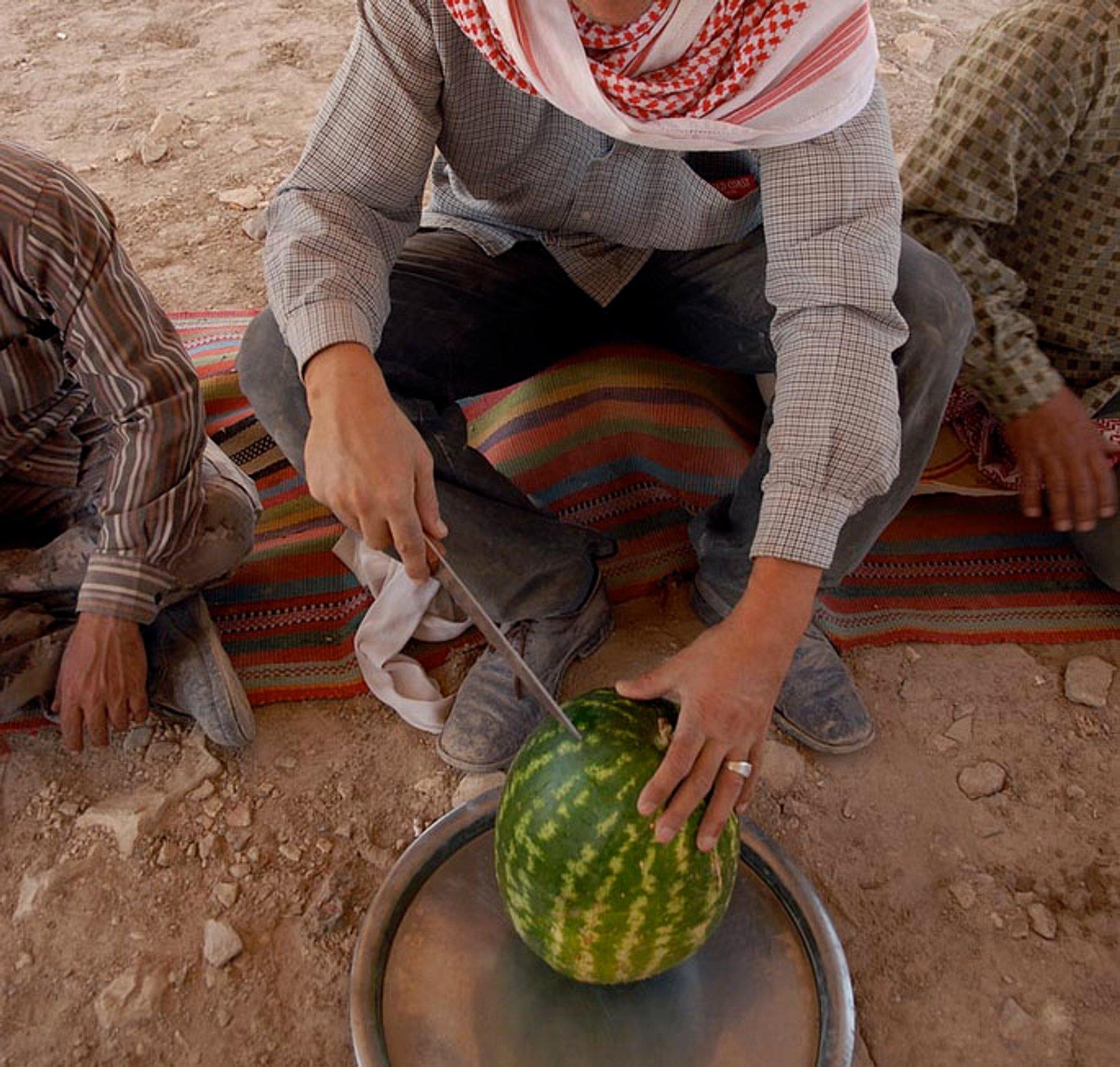 Watermelon in Jordan - Best Season