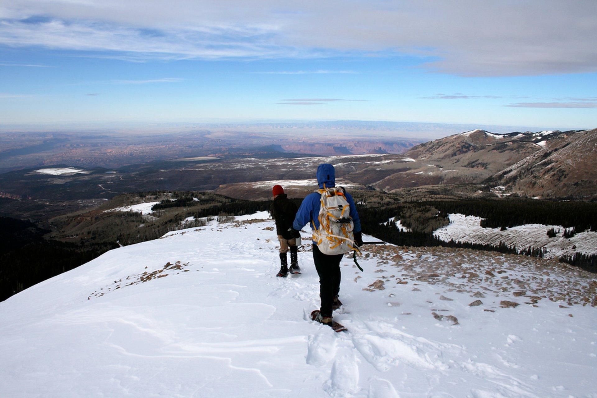 Snowshoeing in Utah - Best Season 2020