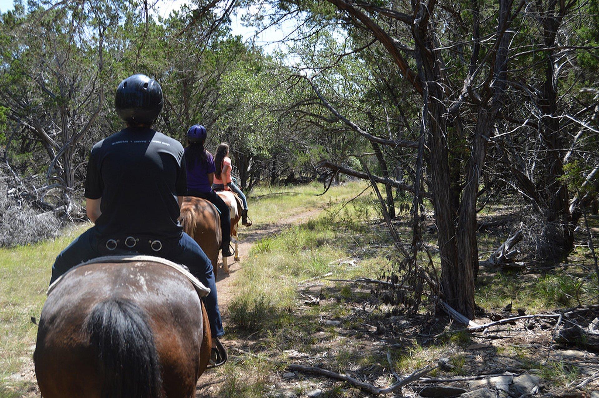 Horseback Riding in Texas - Best Season 2020