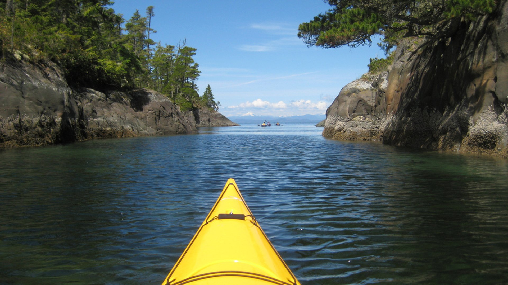 Kayaking through Johnstone Strait 2020