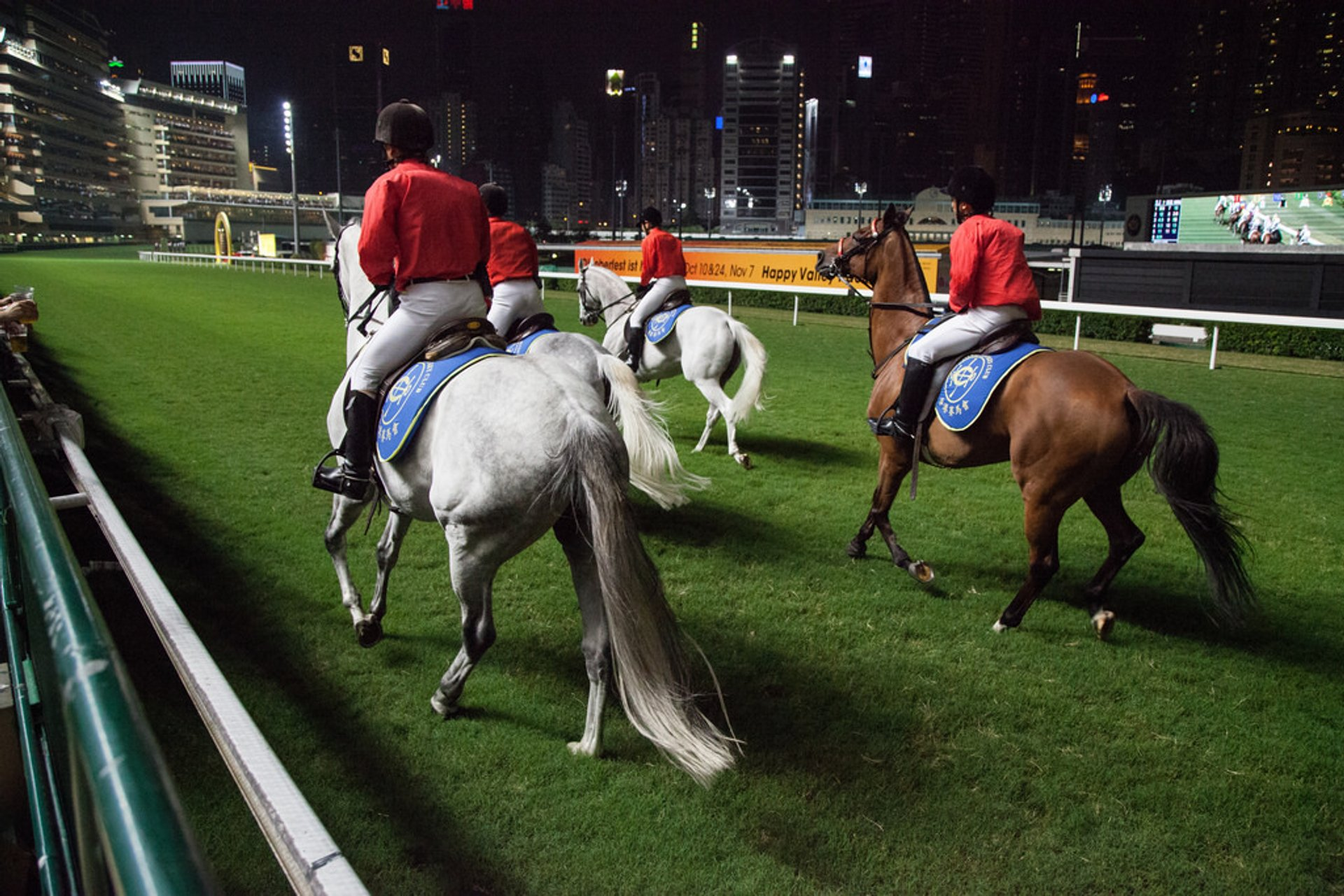 Horse Racing in Hong Kong - Best Season 2020