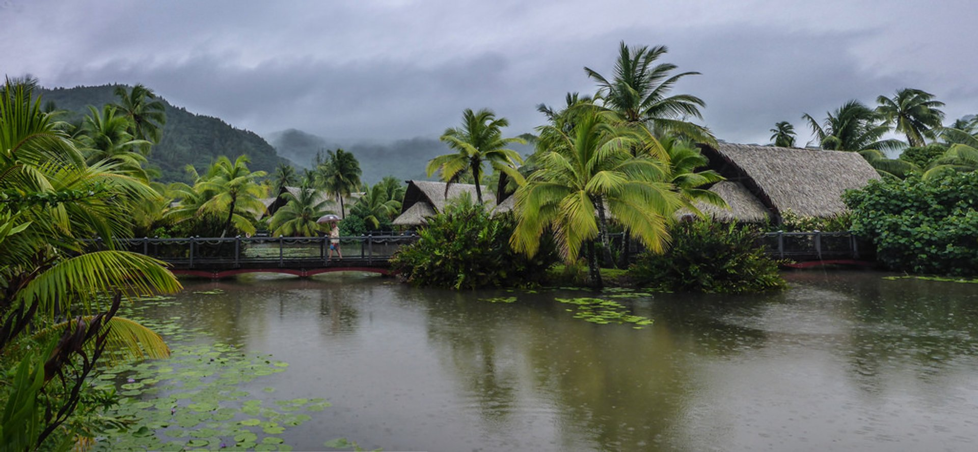 Rainy Season (Summer) in Tahiti 2020 - Best Time