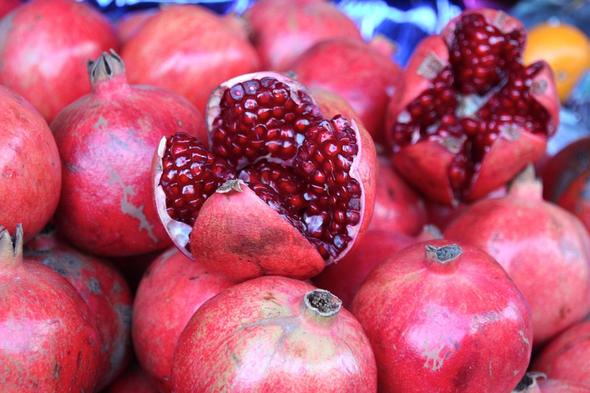 Pomegranate in Montenegro 2020 - Best Time