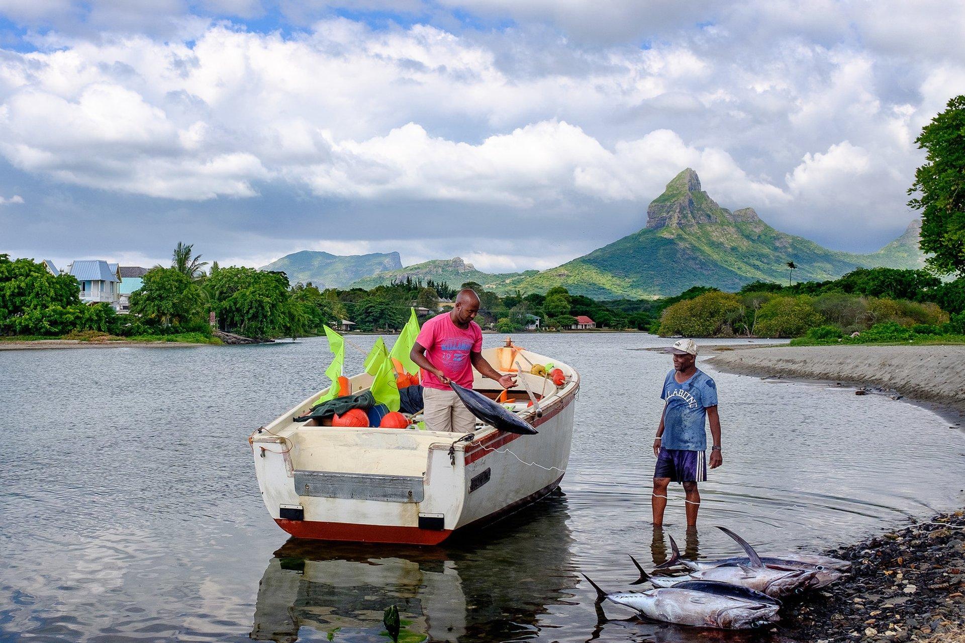 Deep-Sea Fishing Season in Mauritius - Best Season 2019