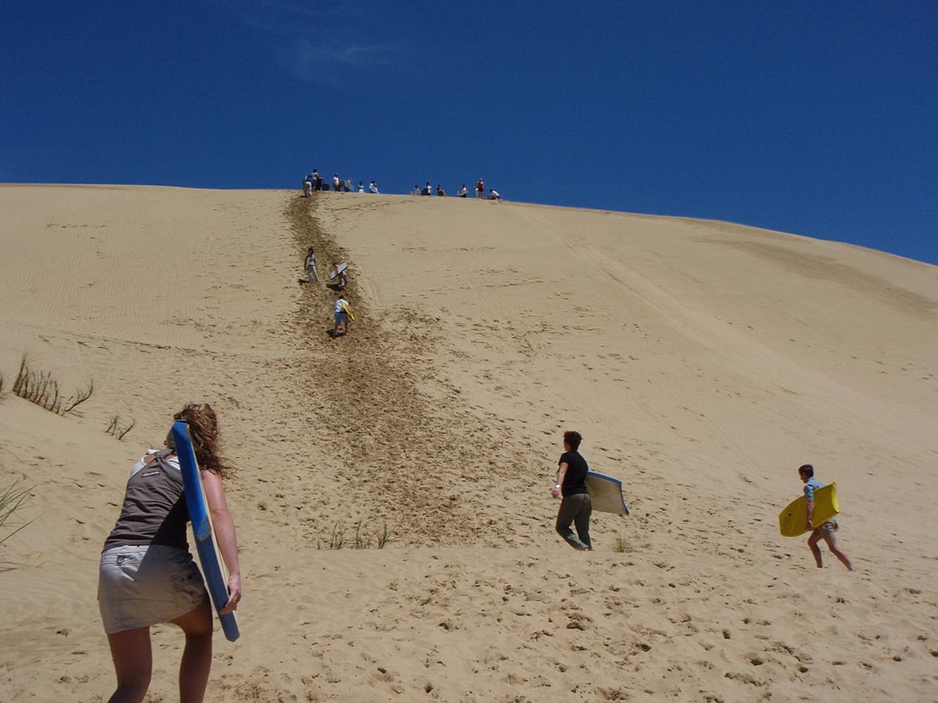 Body Board Down the Sand Dunes in New Zealand - Best Season
