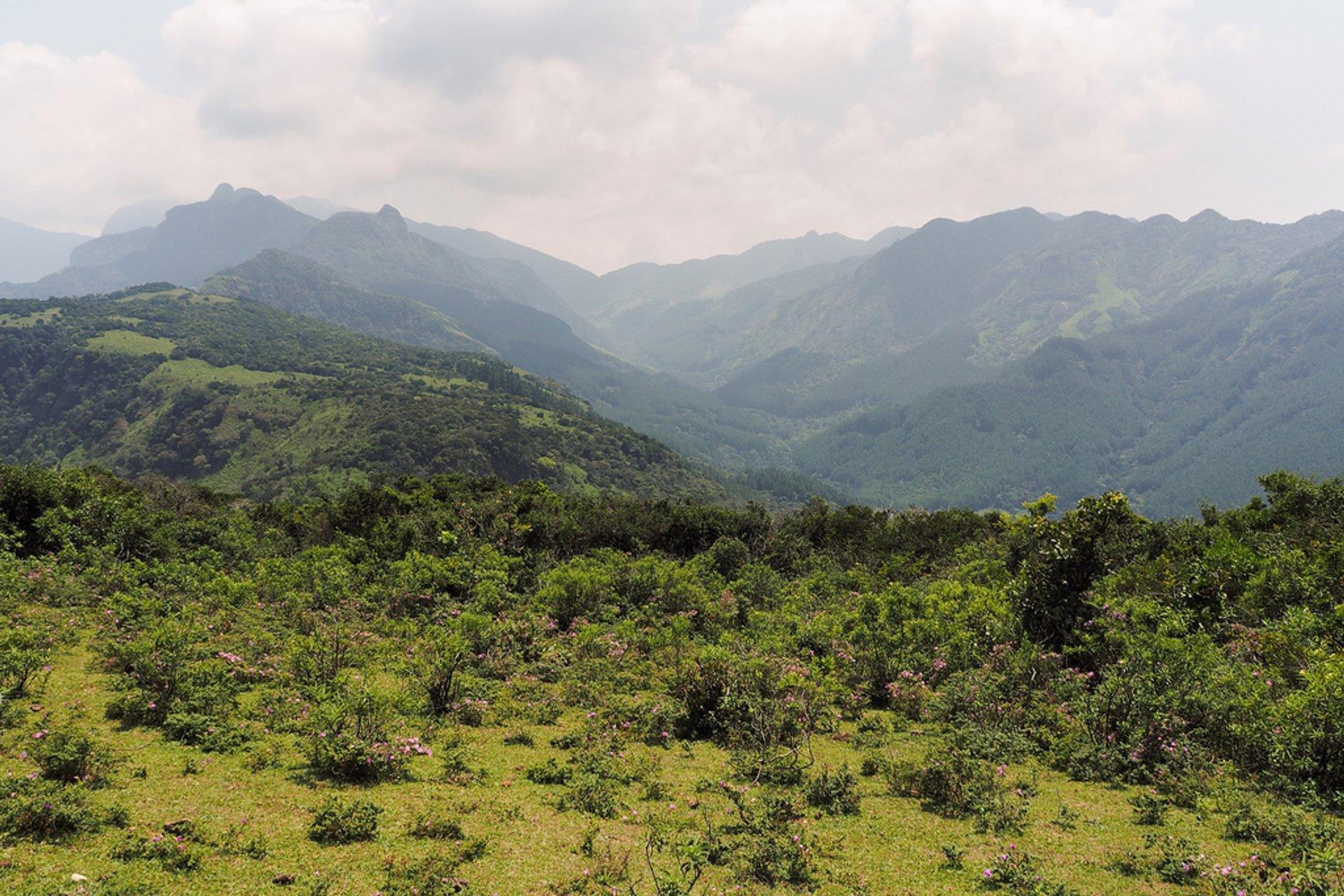 Best time for Trekking in the Knuckles Range  in Sri Lanka 2020