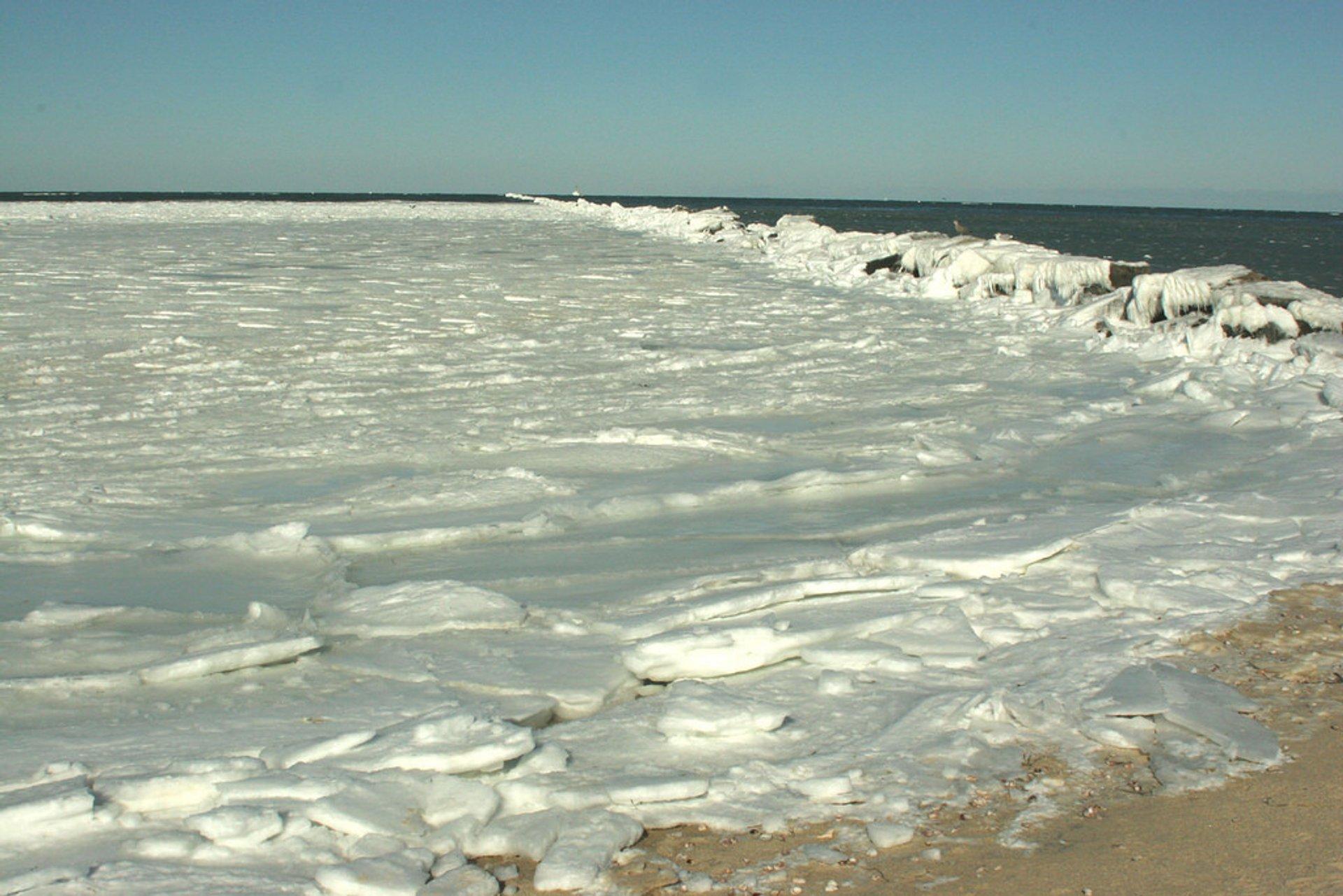 Frozen Waves in Boston 2020 - Best Time