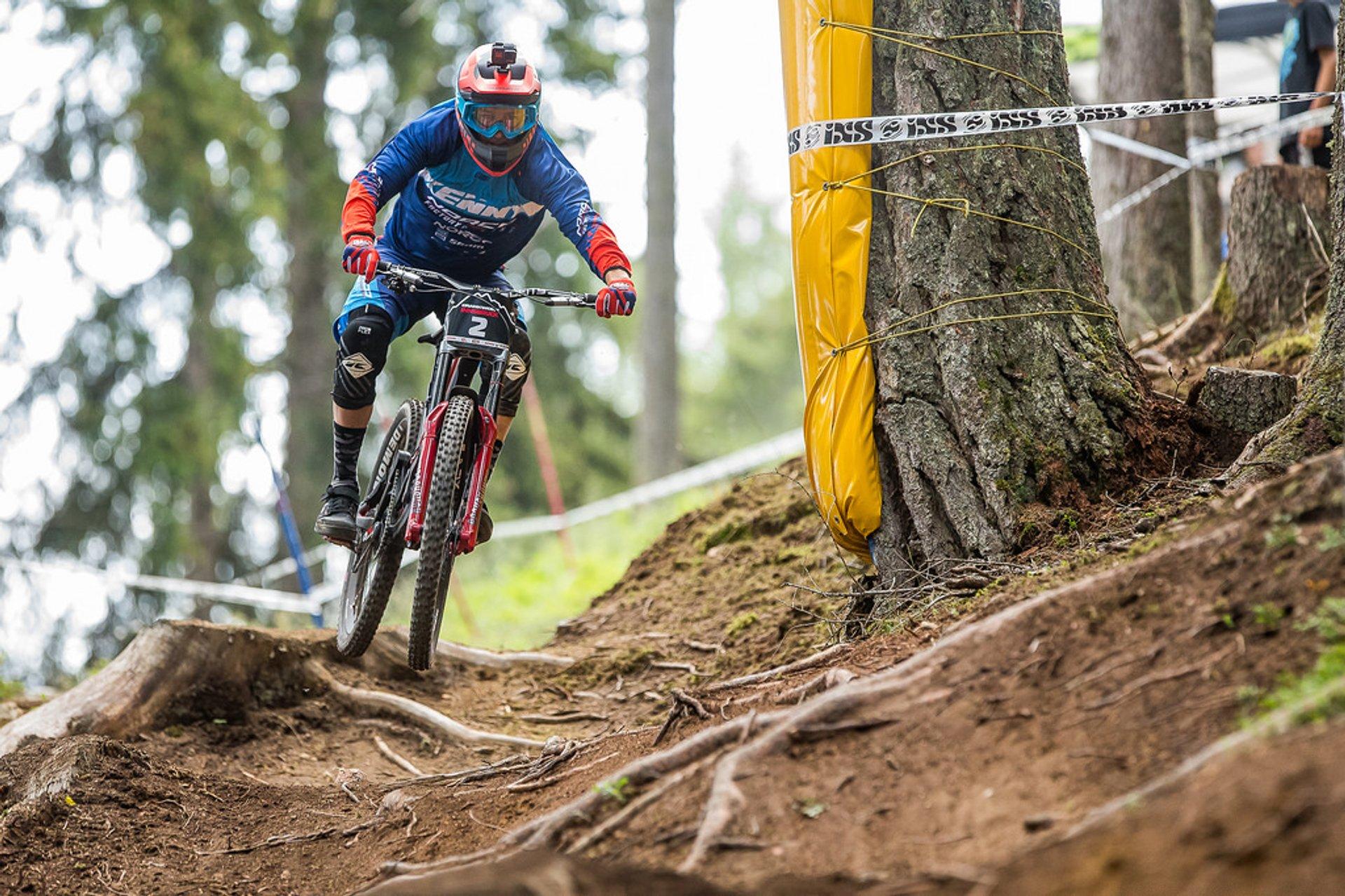 Crankworx Innsbruck - iXS Innsbruck Downhill presented by Raiffeisen Club 2019