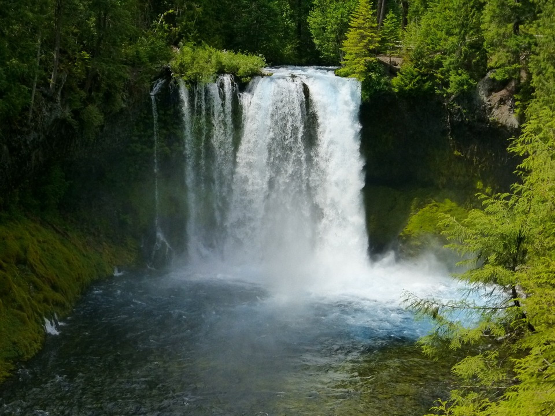 Koosah Falls 2020