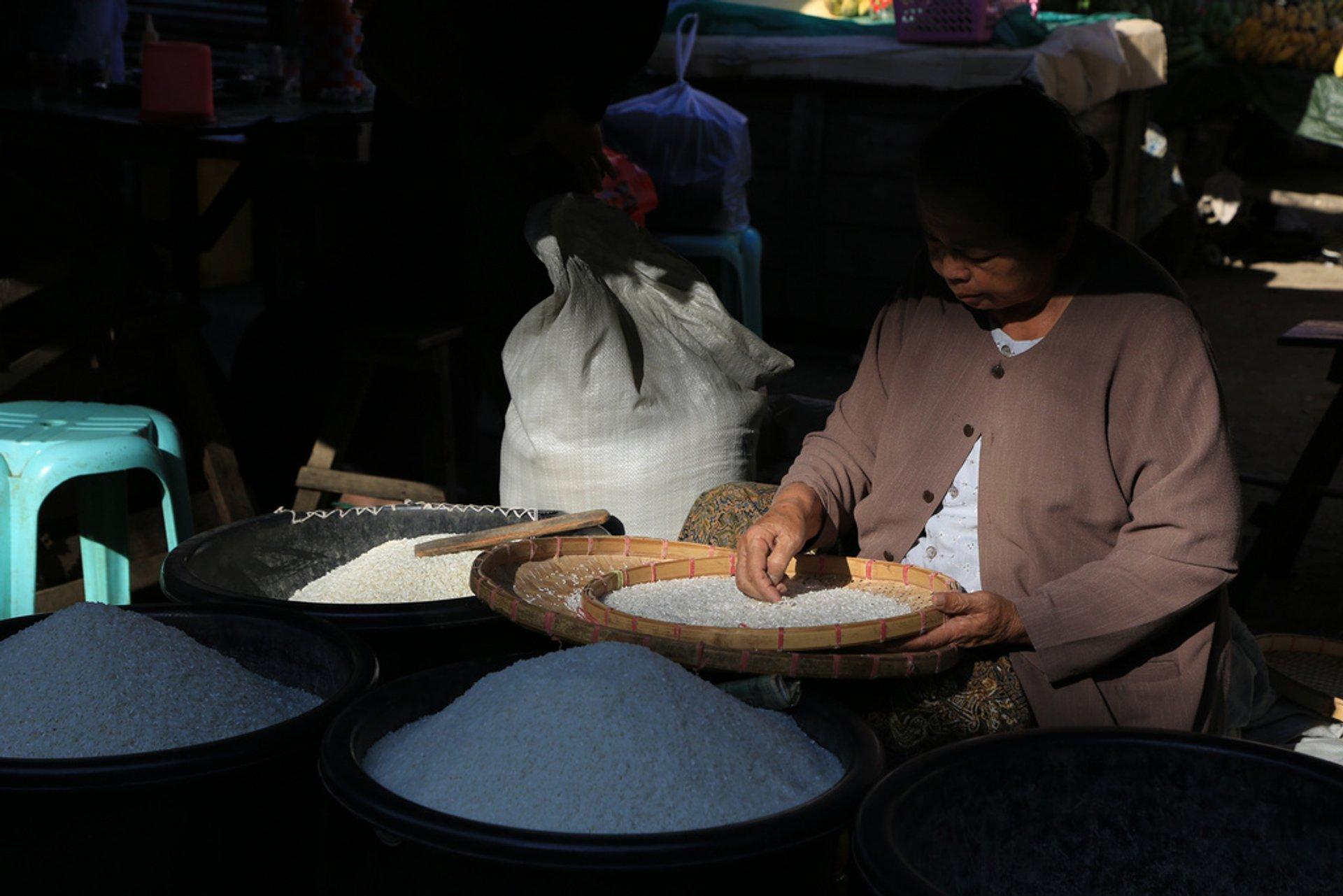Woman trader sorting rice at Keng Tong Market in Myanmar (Burma) 2019