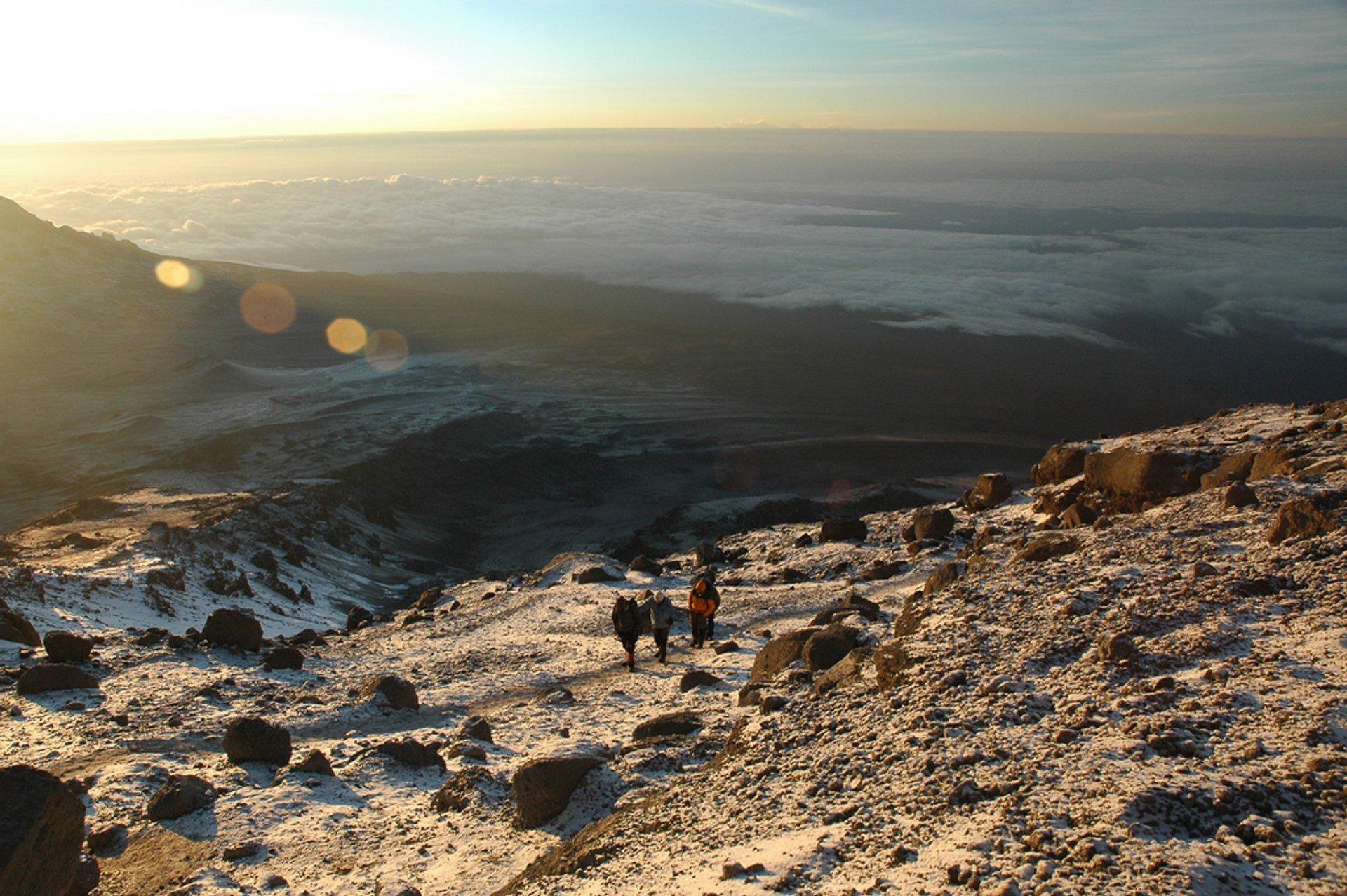 Summit Climb, Day 5 2019