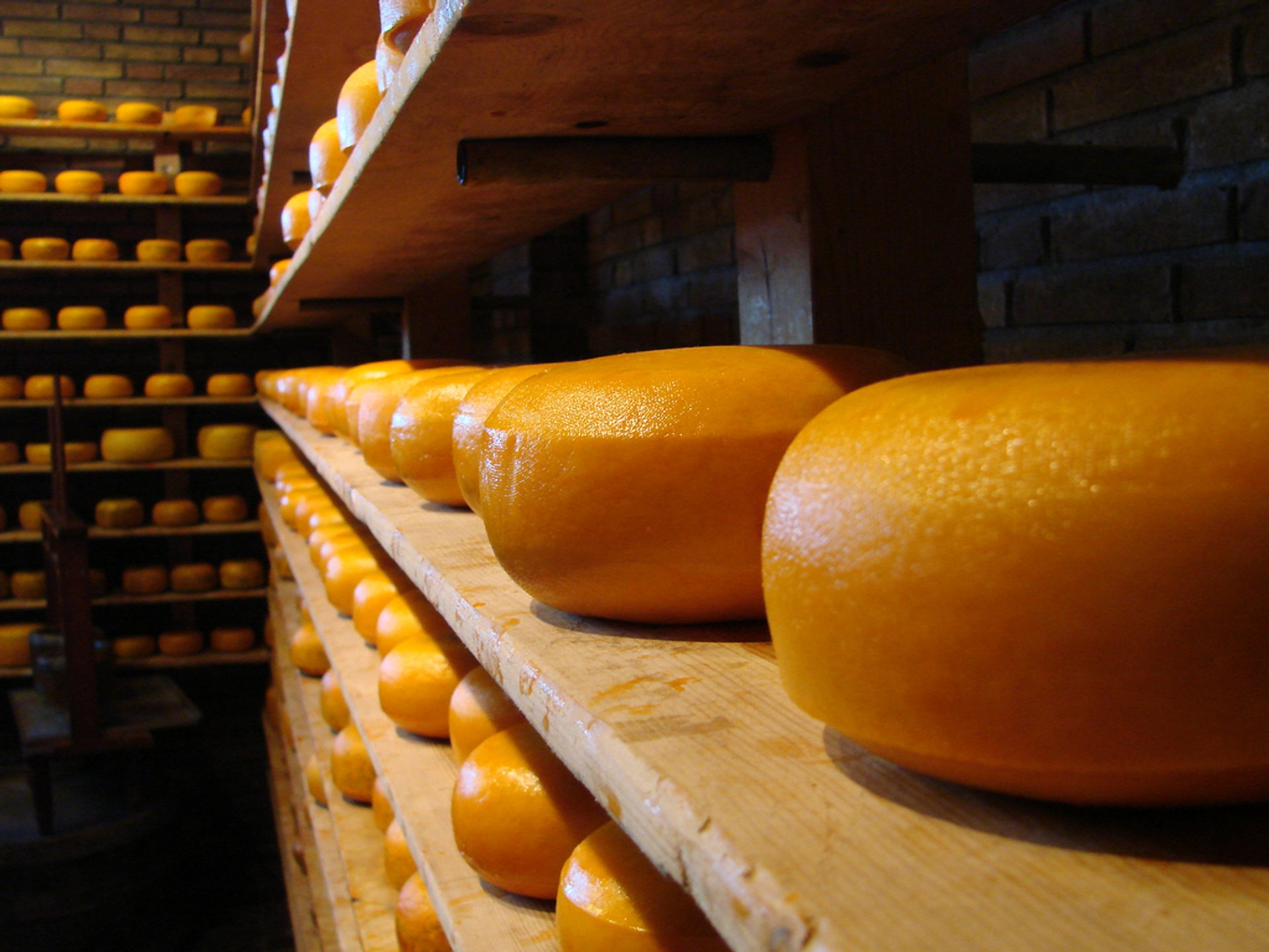 Cheese factory in Volendam 2020