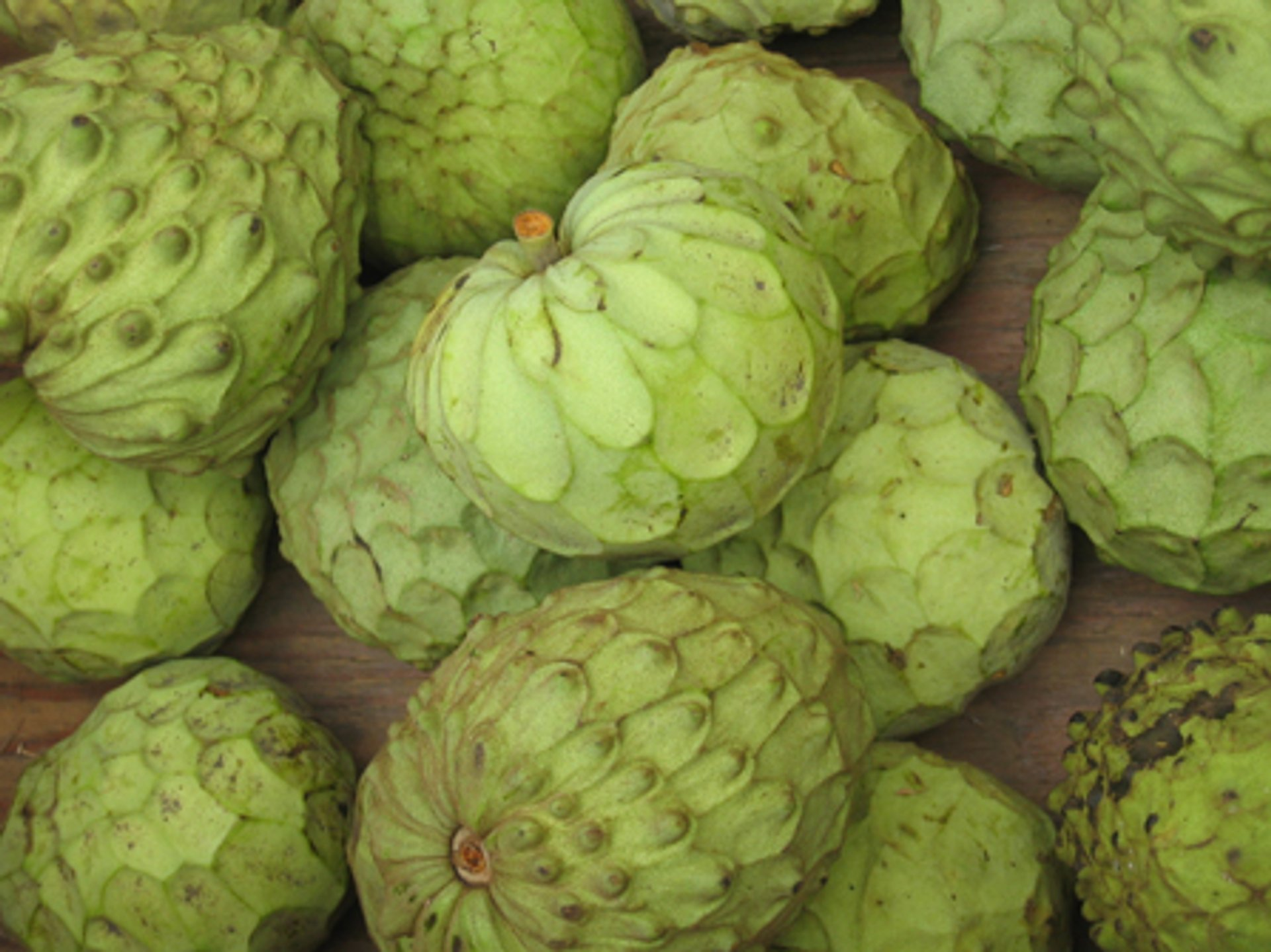 Cherimoya Season in Cuba 2020 - Best Time
