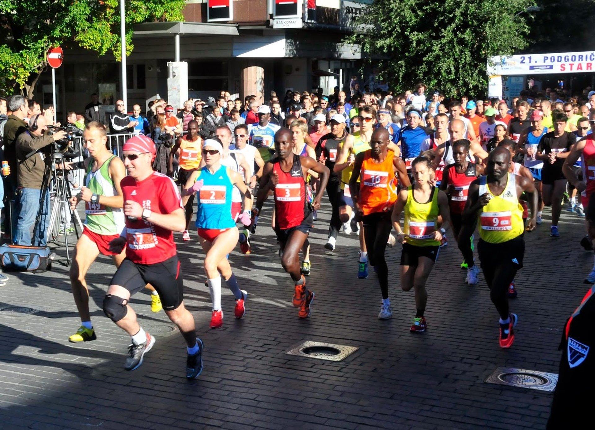 Podgorica Marathon in Montenegro 2020 - Best Time