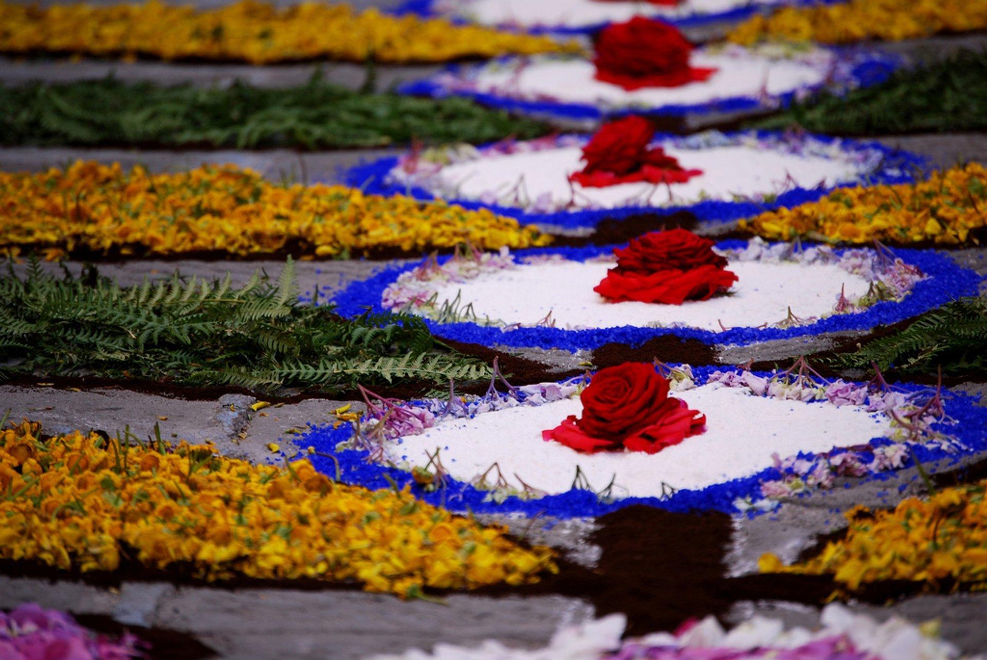 Best time for Infiorata Flower Carpet Festivals in Italy 2020