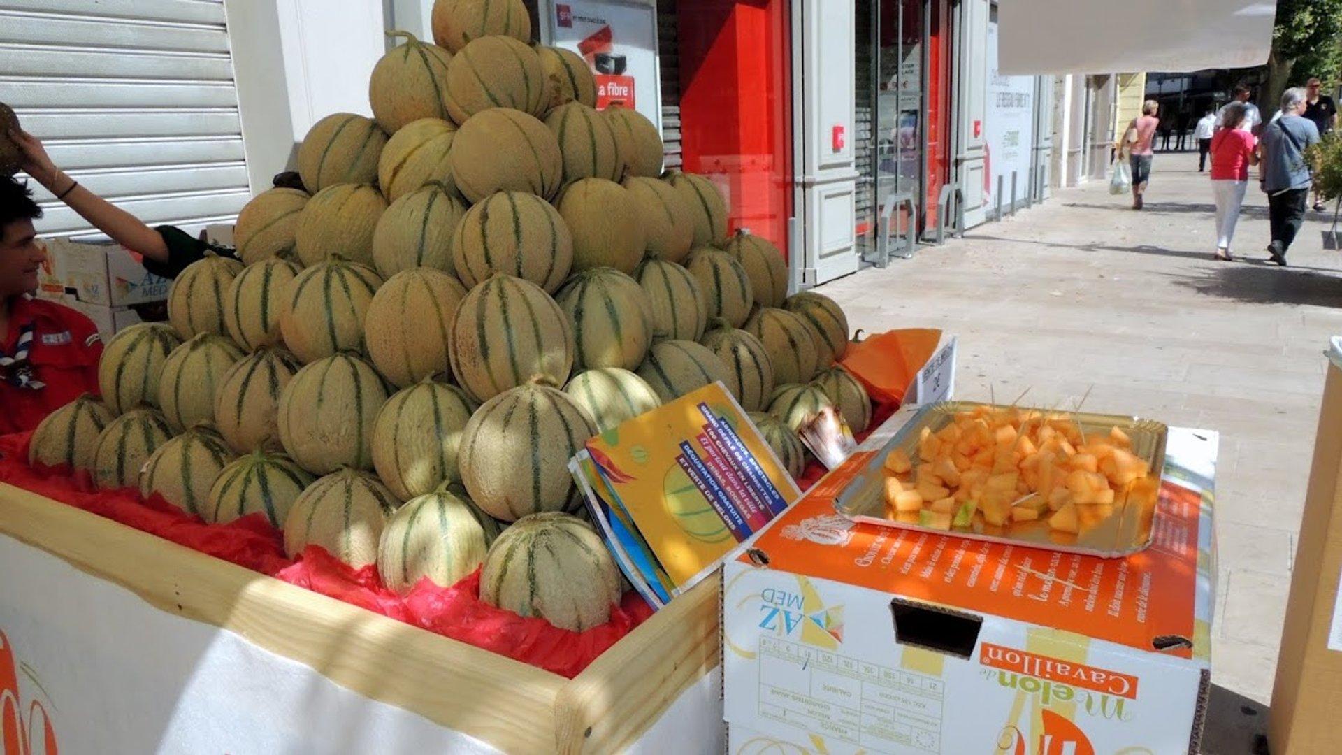 Feria du Melon and Melon Season in Provence & French Riviera - Best Season 2020