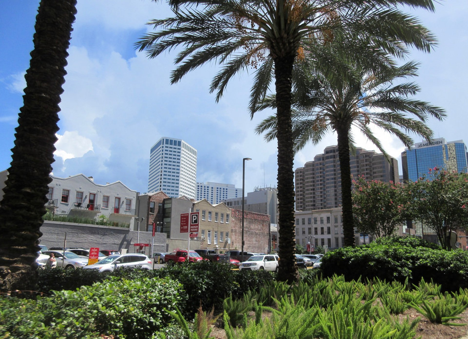 Summer in New Orleans 2020 - Best Time