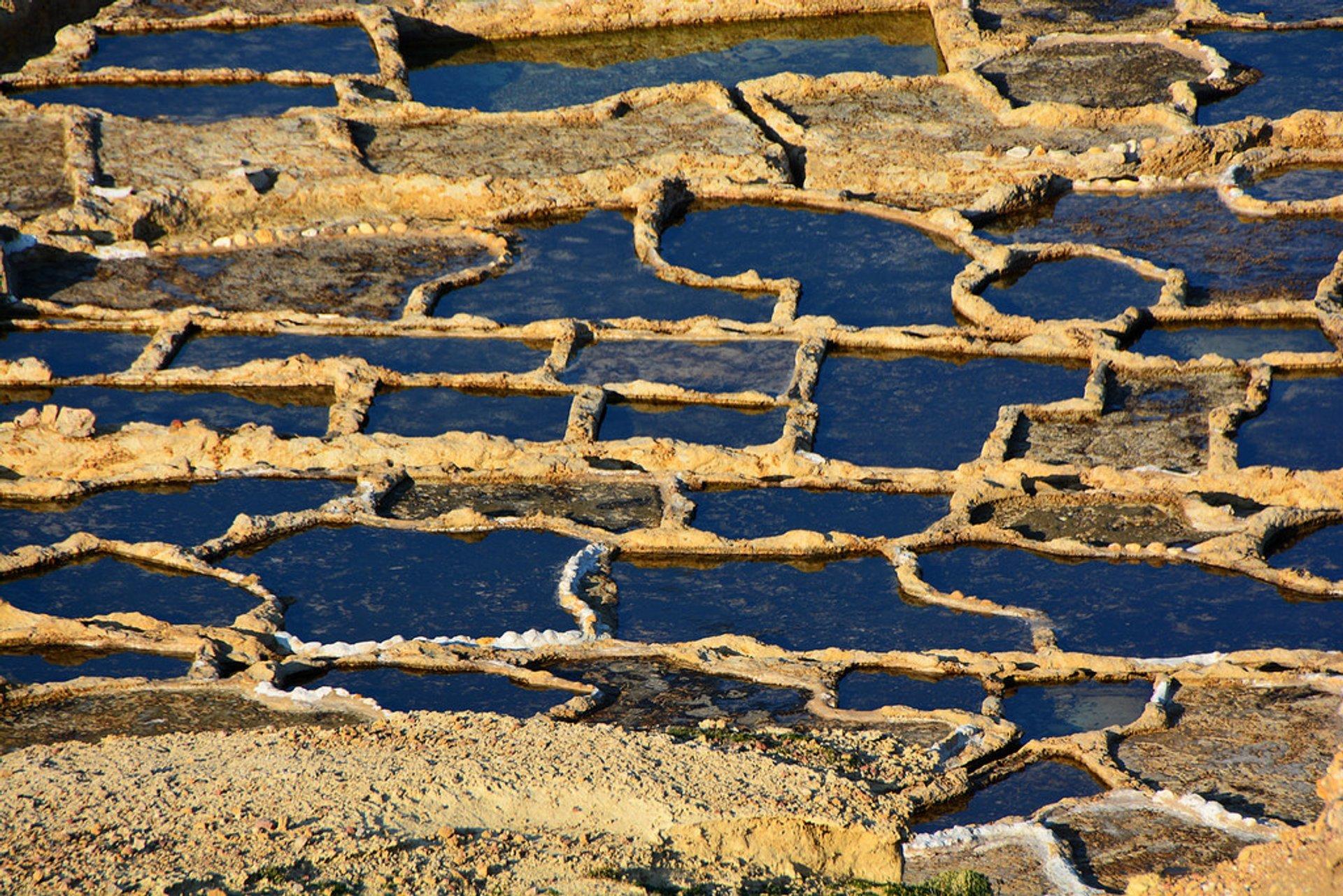 Saltpans Gozo Malta 2020