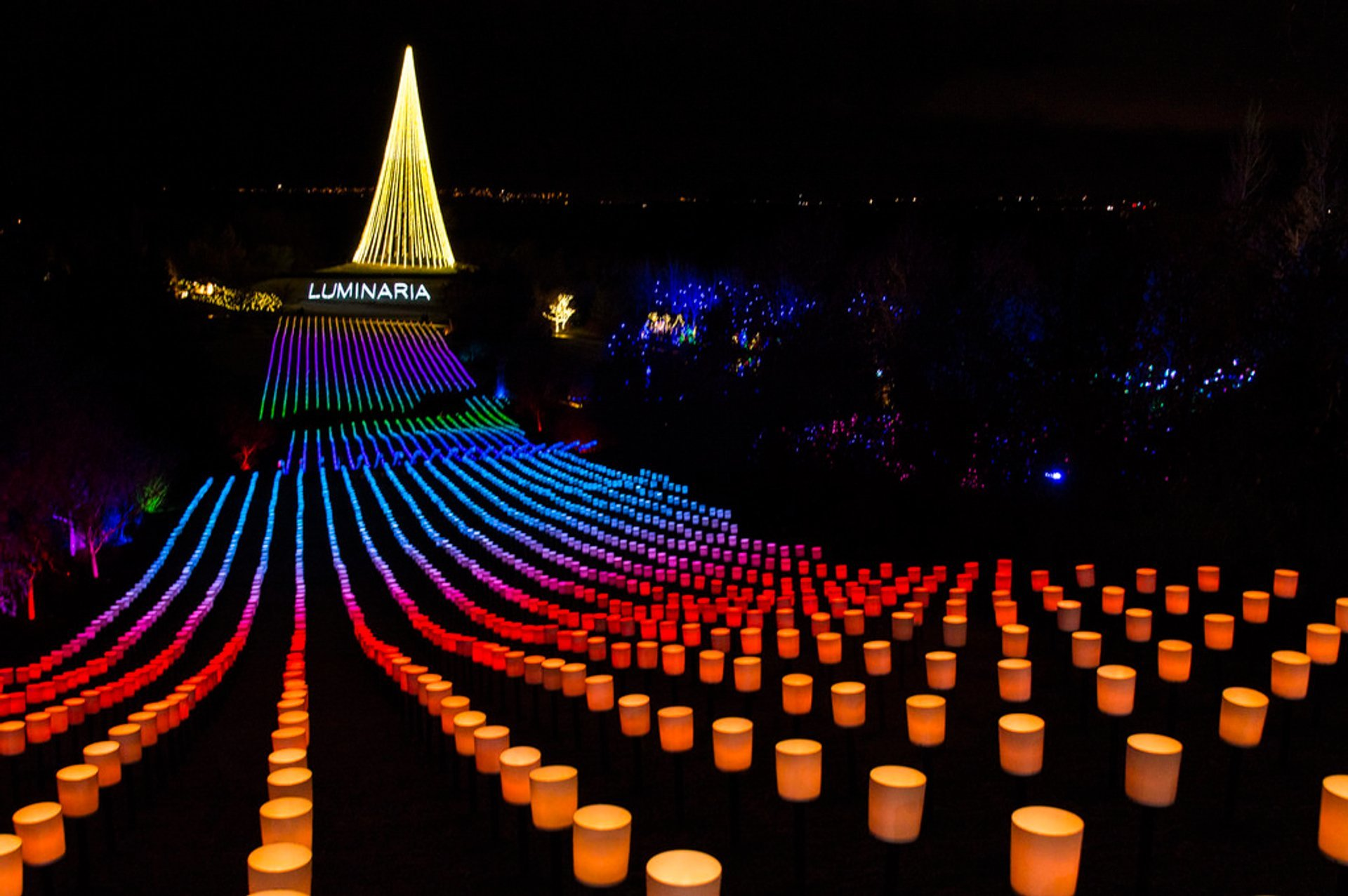 Luminaria Opening Display 2020