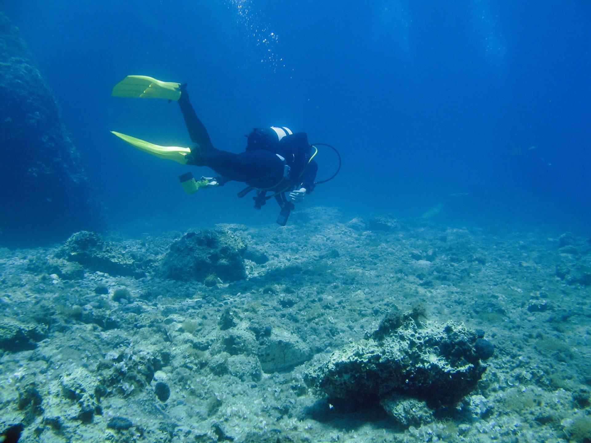 Diving in Croatia 2019 - Best Time