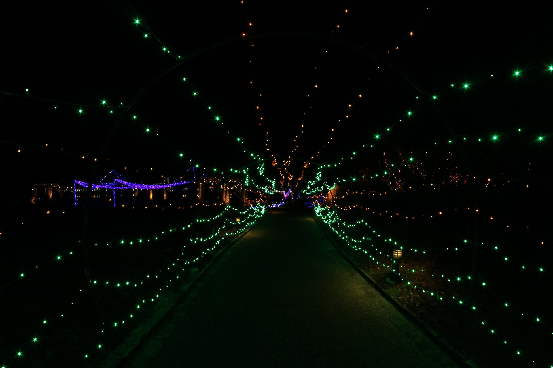 Best time for Dominion Energy GardenFest of Lights at Lewis Ginter in Virginia 2020