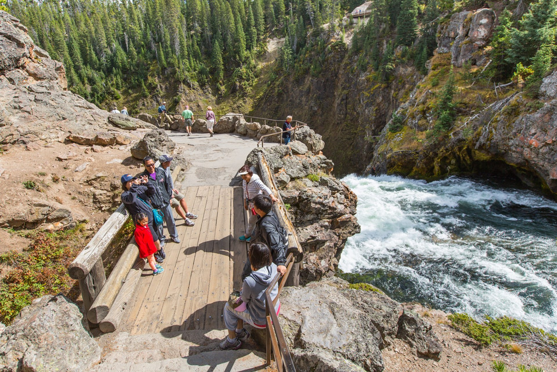 High Season in Yellowstone National Park - Best Time