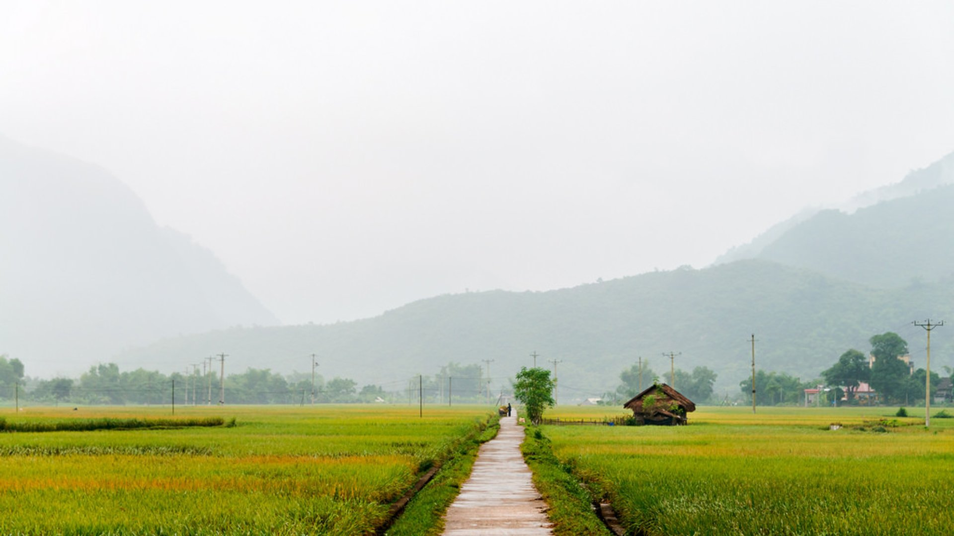 North Vietnam Wet Season in Vietnam - Best Season 2019