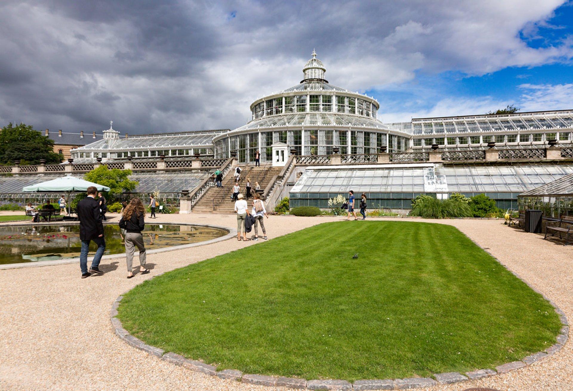 Botanisk Have (Botanical Garden) in Copenhagen 2020 - Best Time