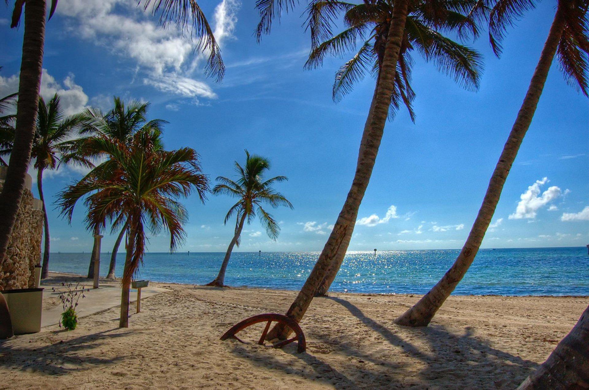 Beach Season in Florida 2020 - Best Time