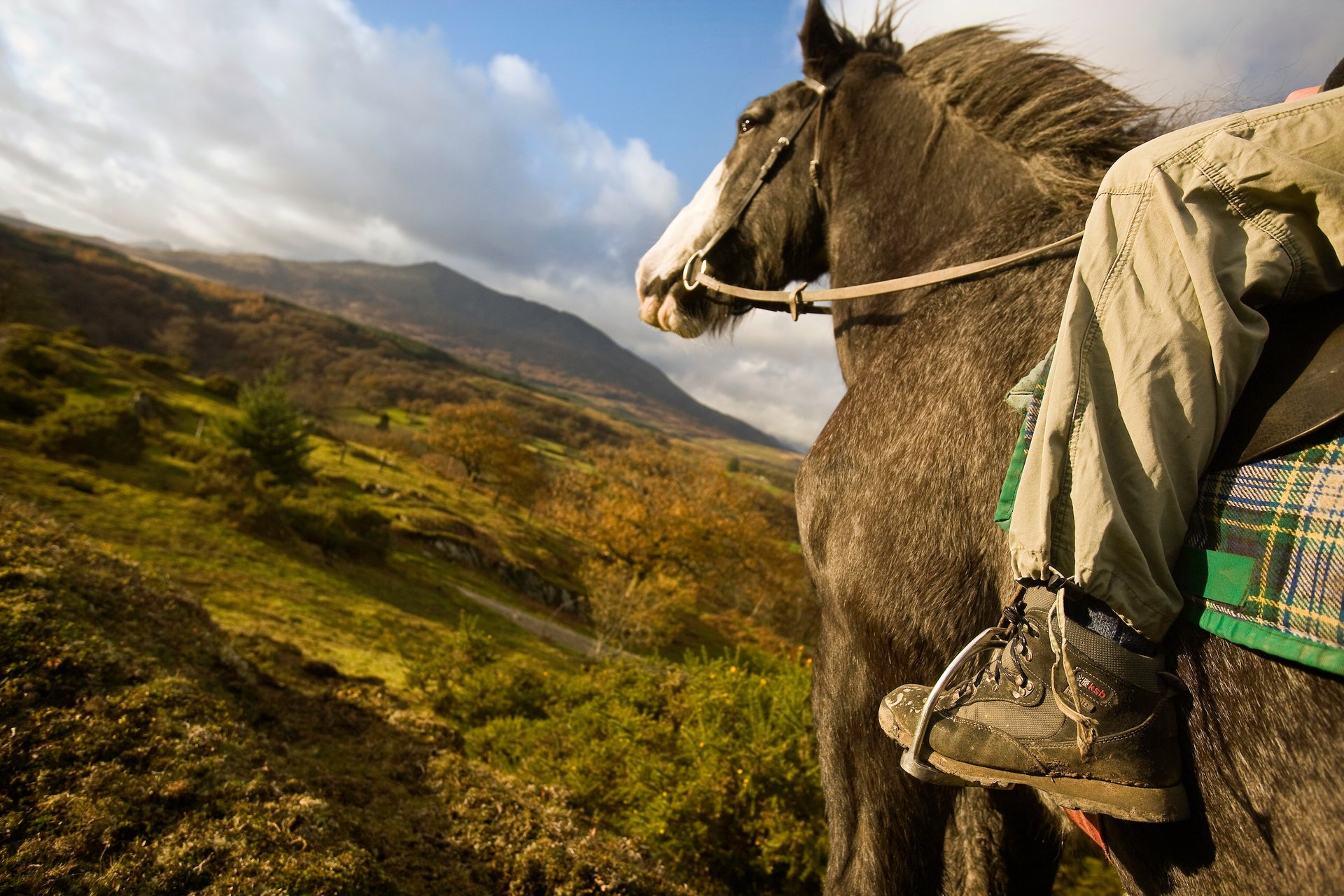 Horse Riding in Wales - Best Season