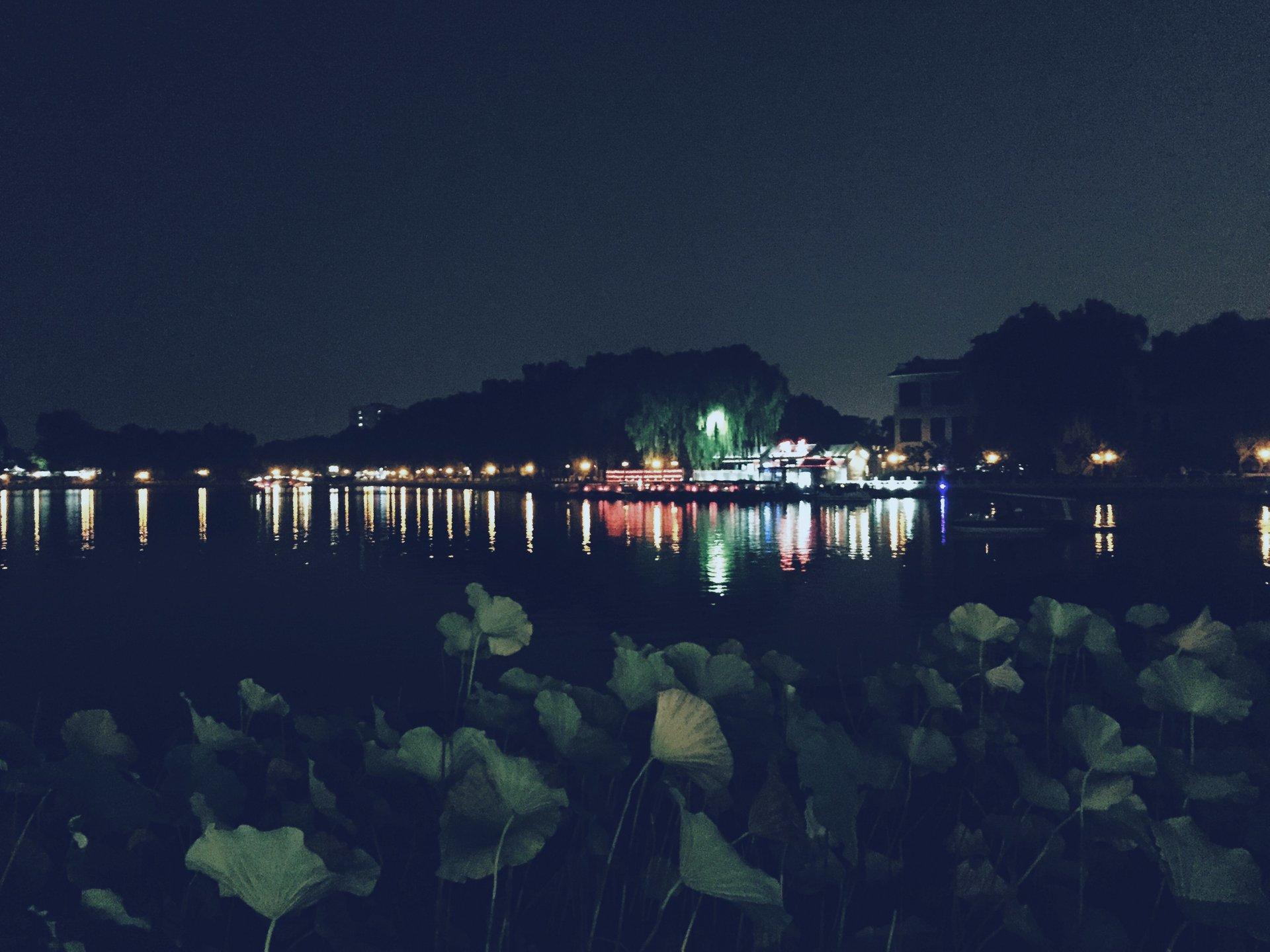 Lotus Market at night 2020