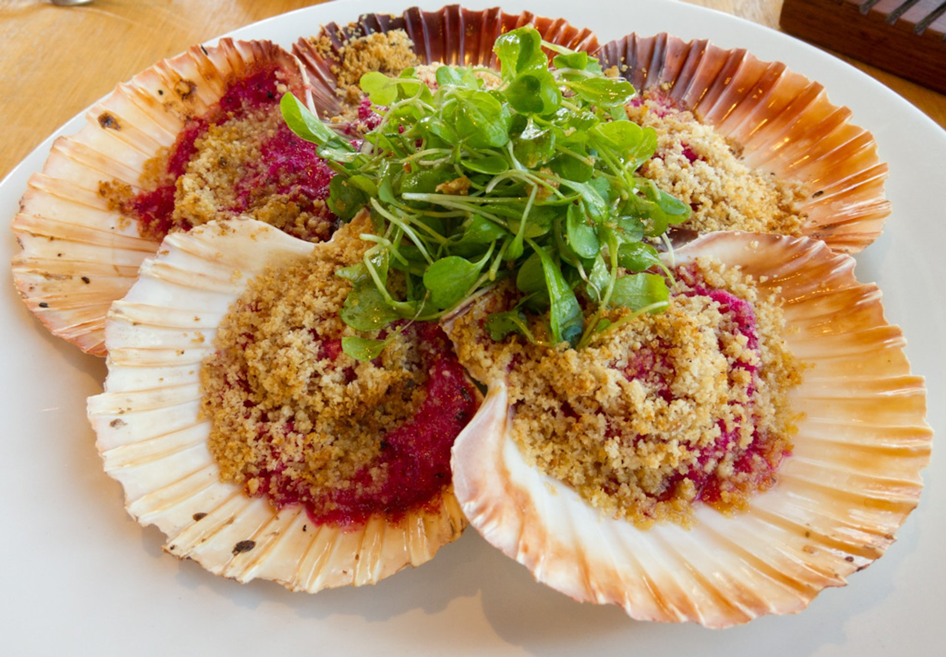 Best time for Scallop in Tasmania
