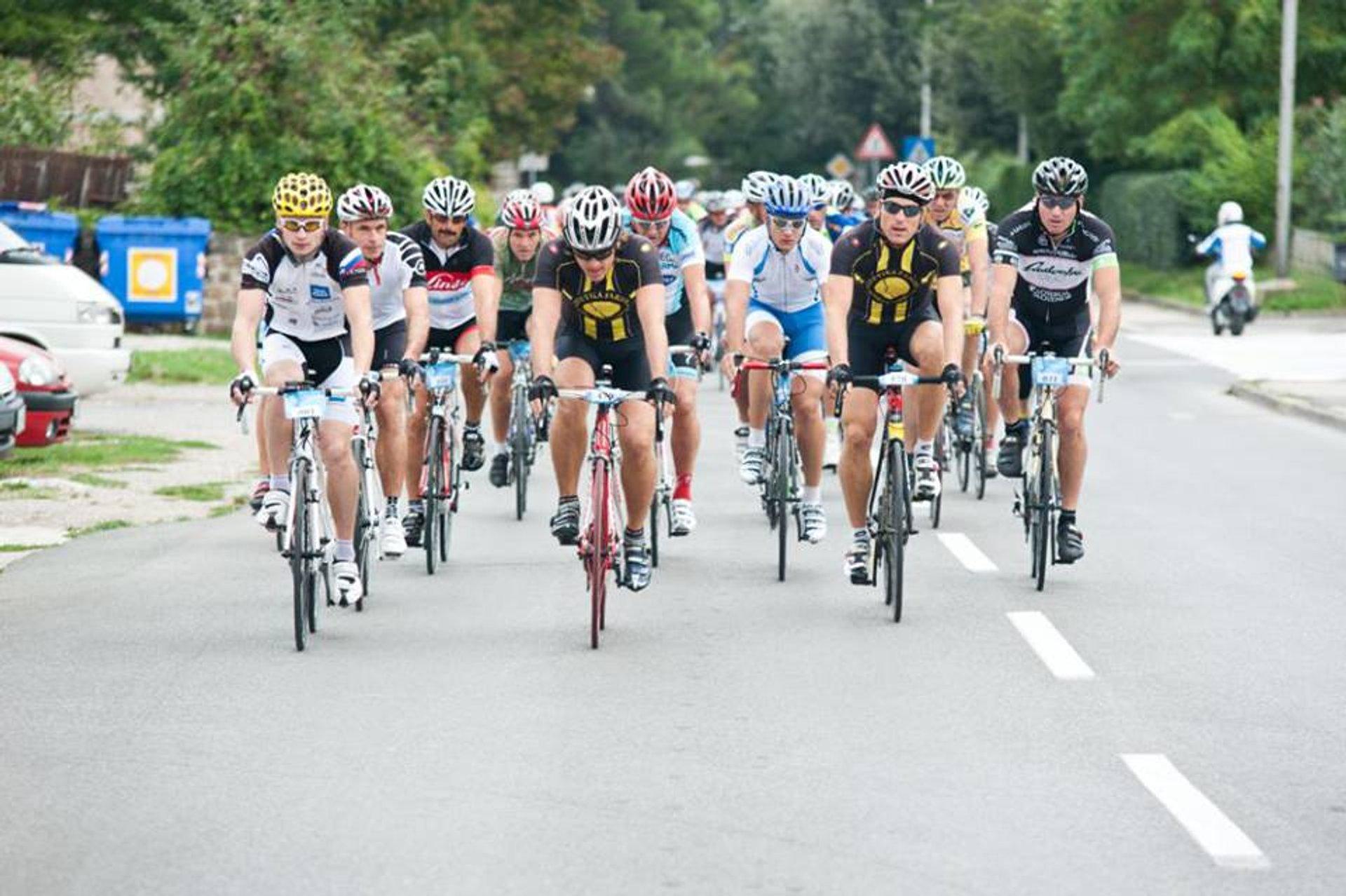 Istrian Cycling Marathon in Slovenia - Best Season 2020