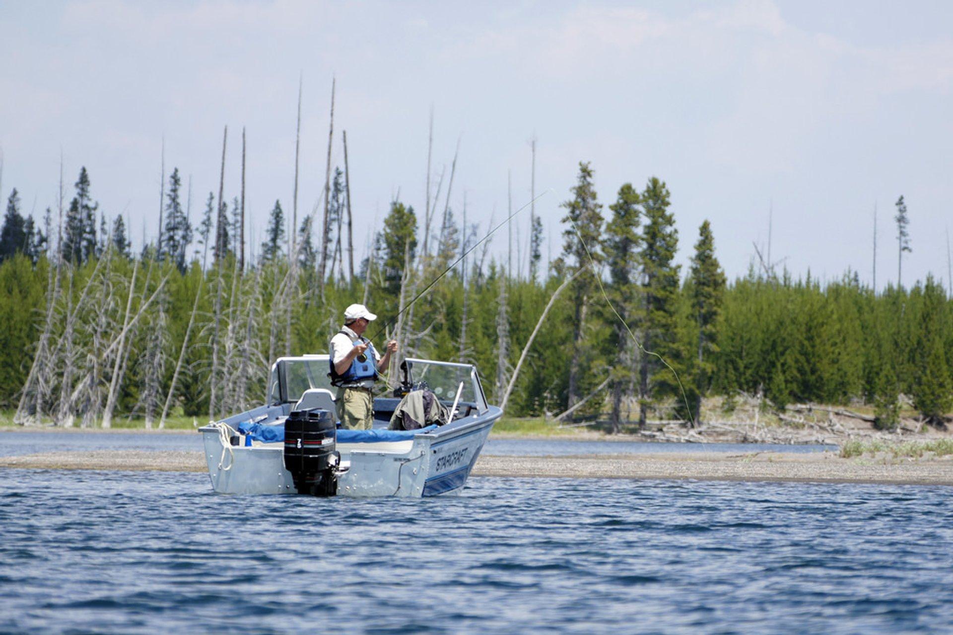 Fishing in Yellowstone Lake 2020