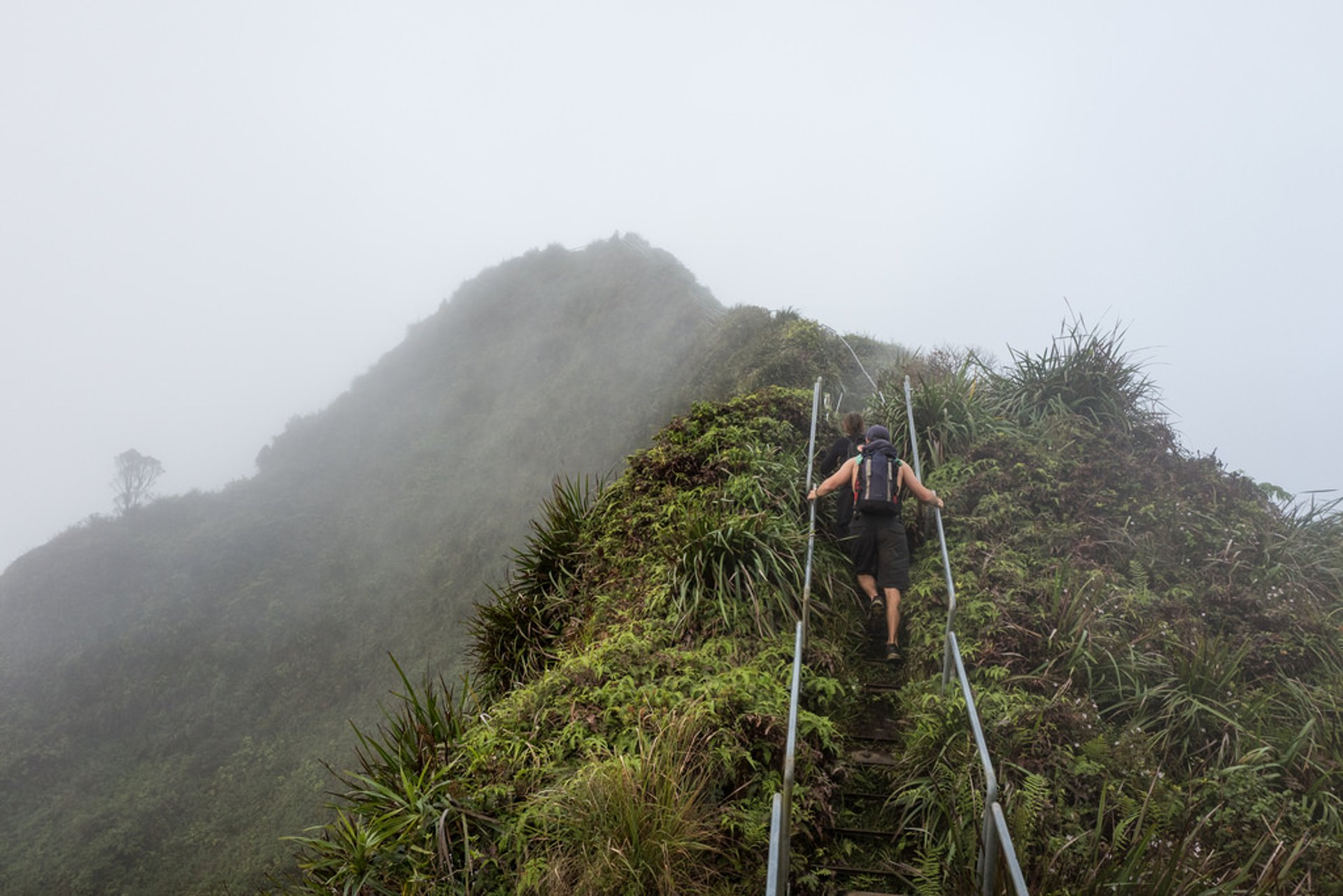 Moanalua Valley Trail to Haiku Stairs in Hawaii - Best Season 2019