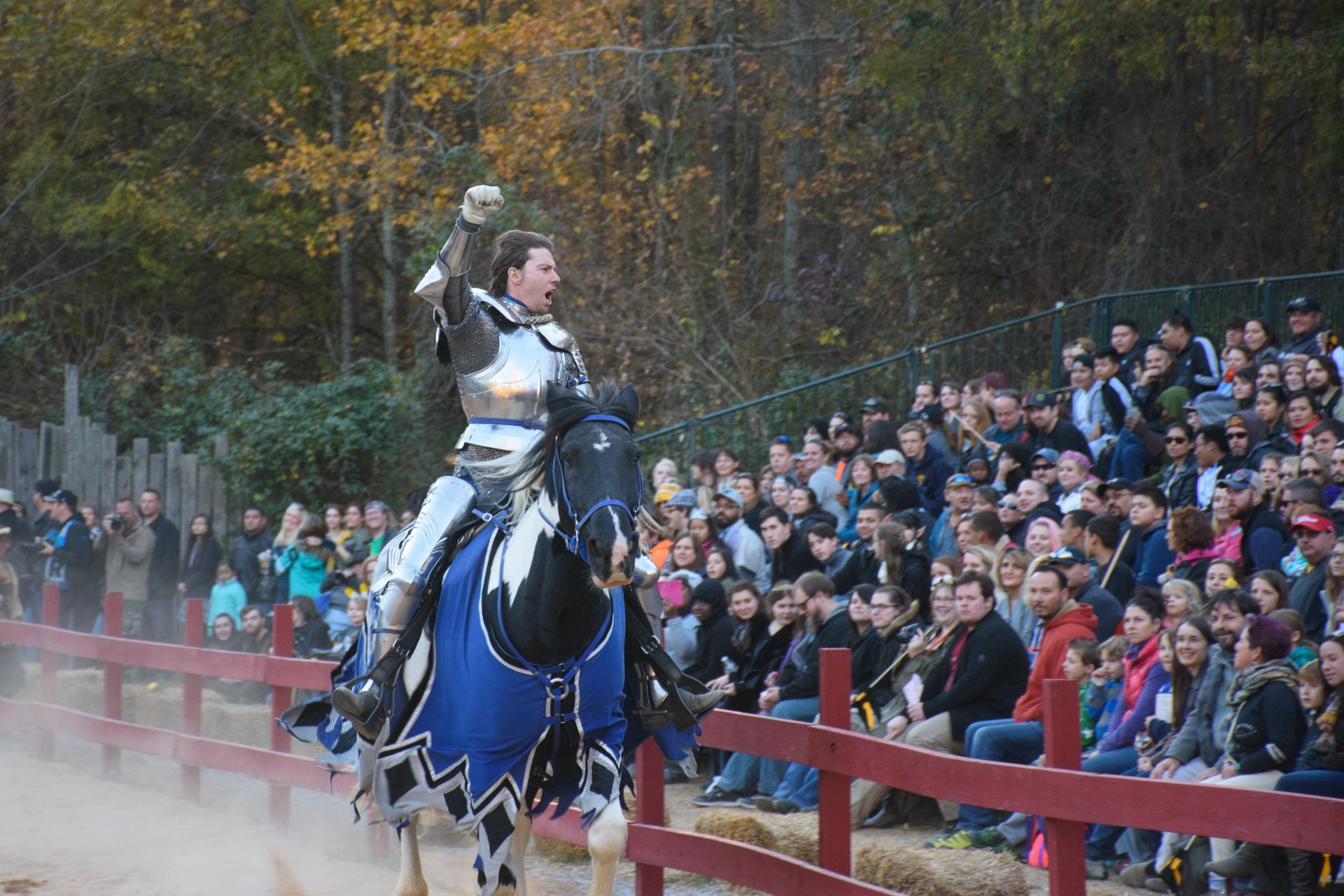 Best time for Carolina Renaissance Festival in North Carolina 2020